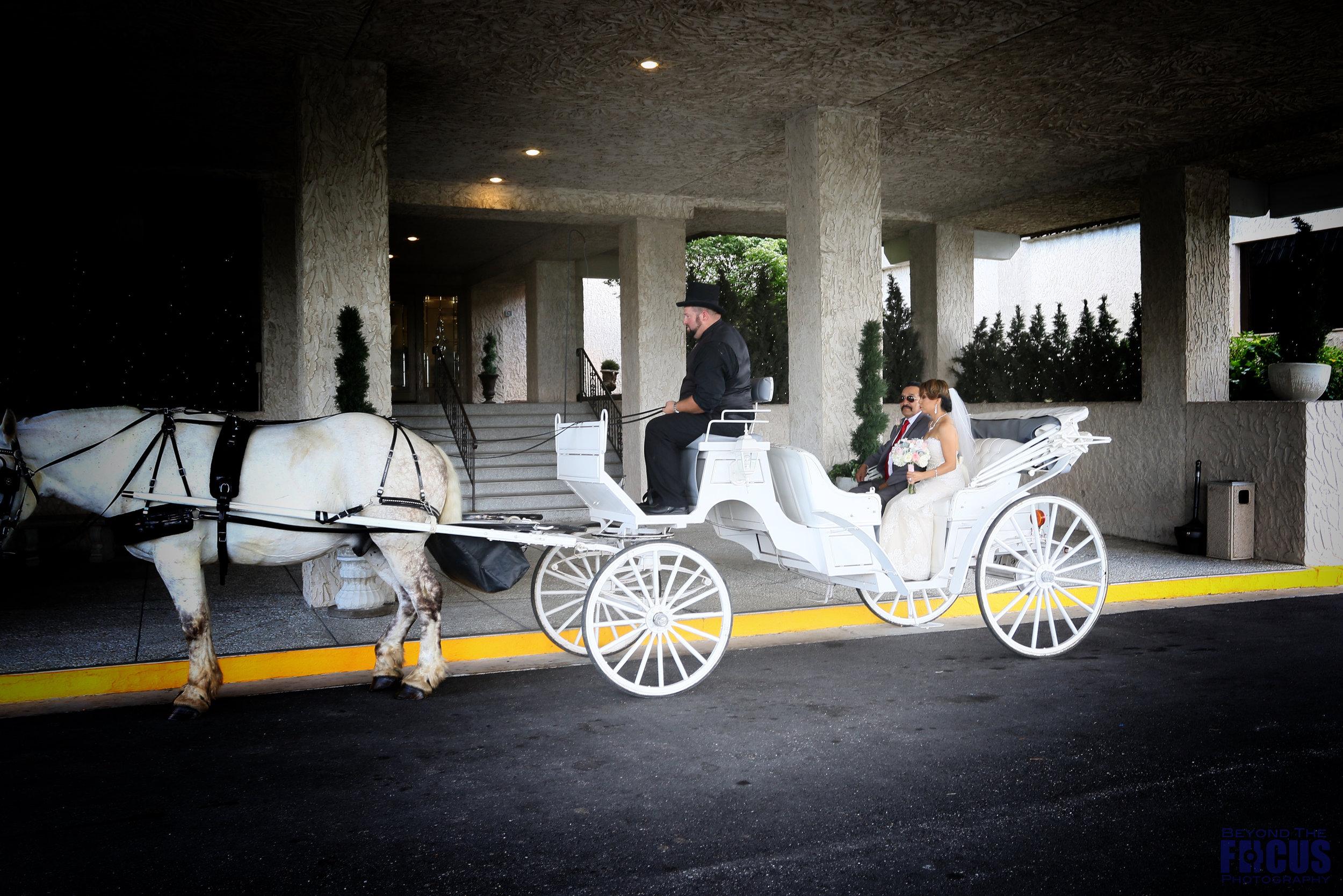 Palmer Wedding - Wedding Ceremony3.jpg