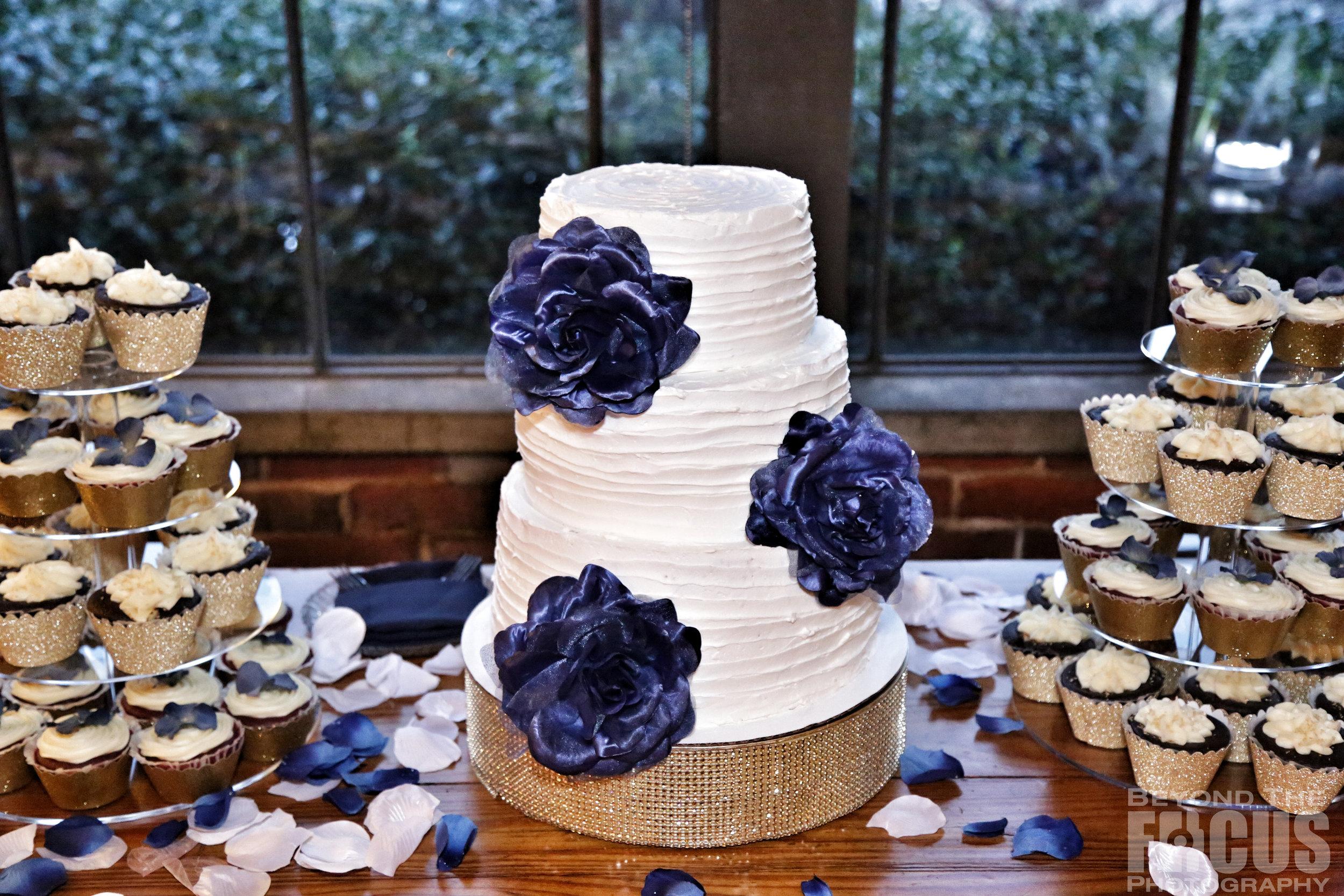 Matthews_Wedding_Reception_3.jpg