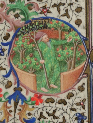 Book of Hours, France
