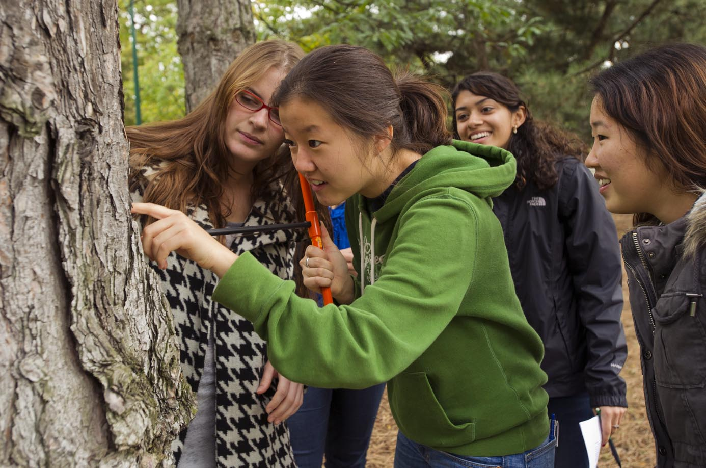 Charlotte Funk (CAS12), from left, Angela Park (CAS13), Poorva Bhade (CAS13) and Chystal Choe (CAS12) take core samples of trees along Bay State Road for their Biology of Global Change course October 18, 2011. The students were measuring the trees ring width to learn how climate has effected their growth.  Photo by Cydney Scott for Boston University Photography