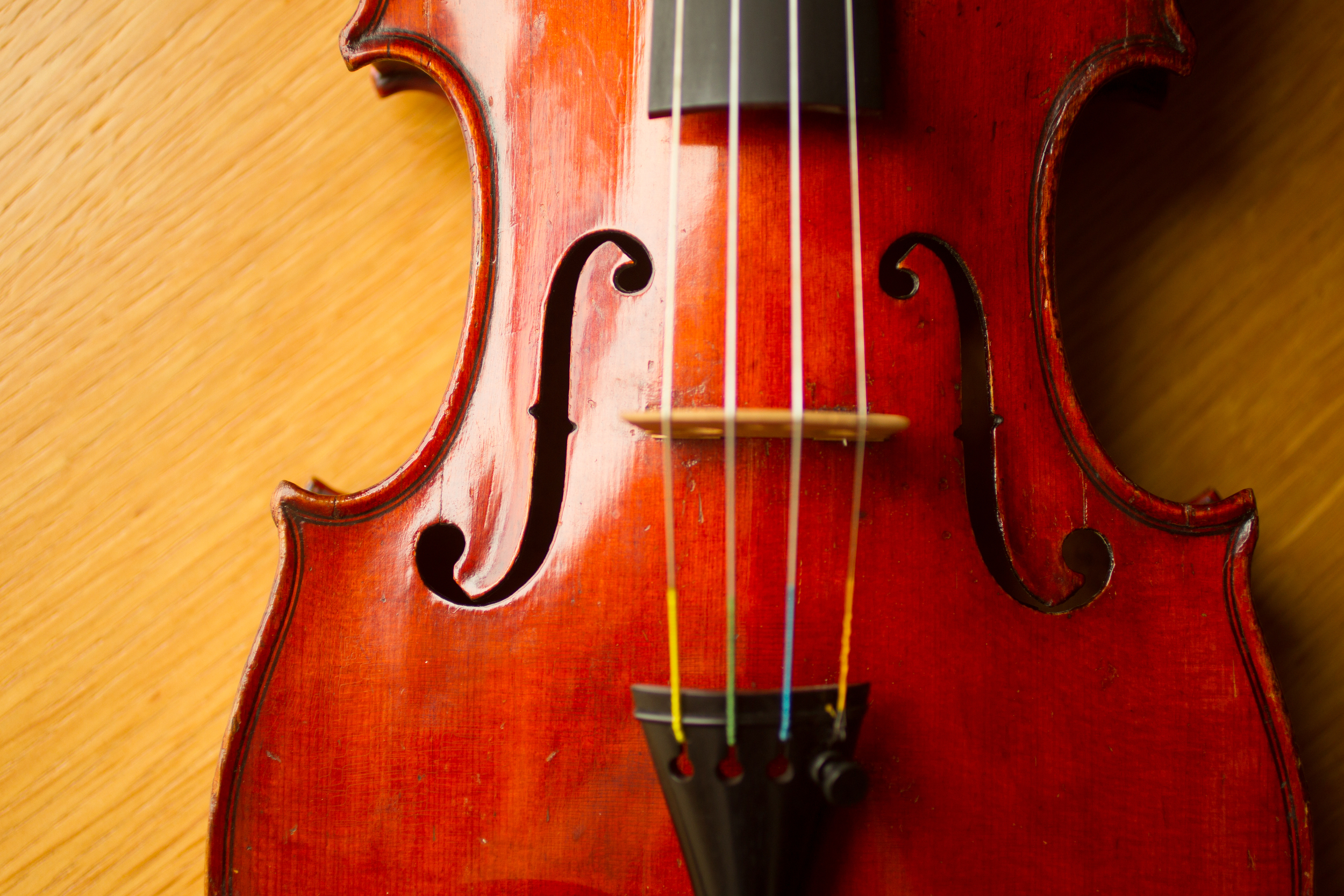Carriage House Violins of Johnson String Instrument