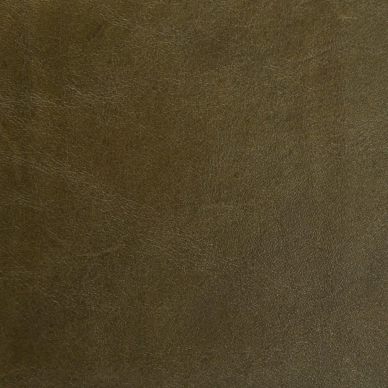 Leather-Standard-Spruce