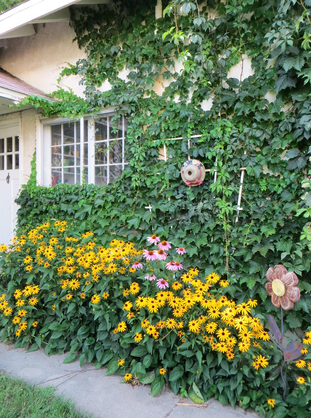 Garden house -- Cotton Cashmere Cat Hair