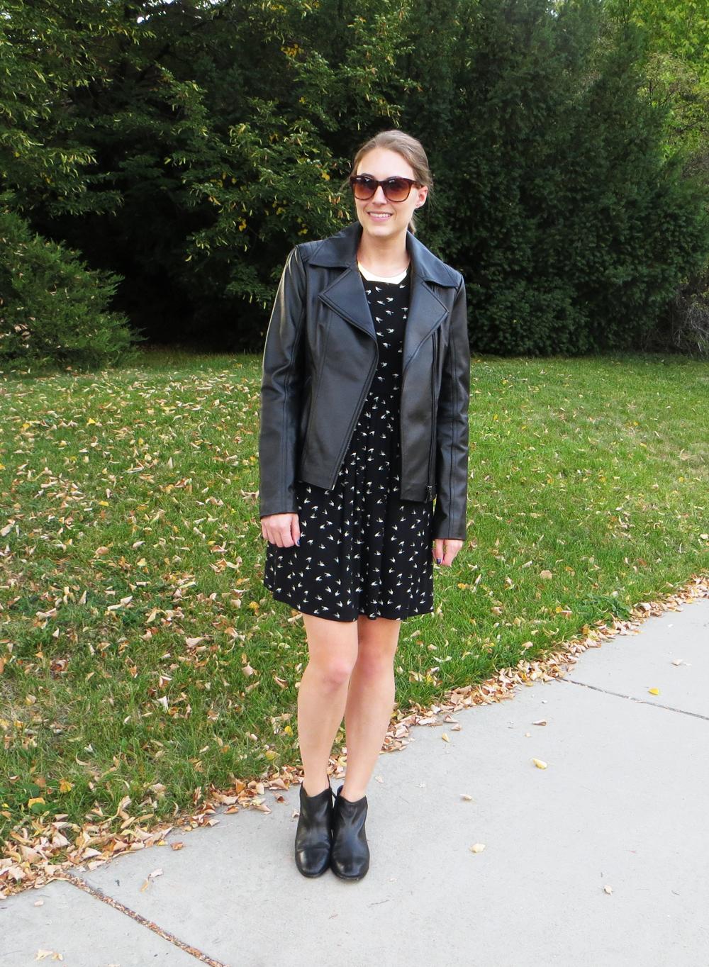Black leather jacket, bird-print dress, black ankle boots, gold choker -- Cotton Cashmere Cat Hair