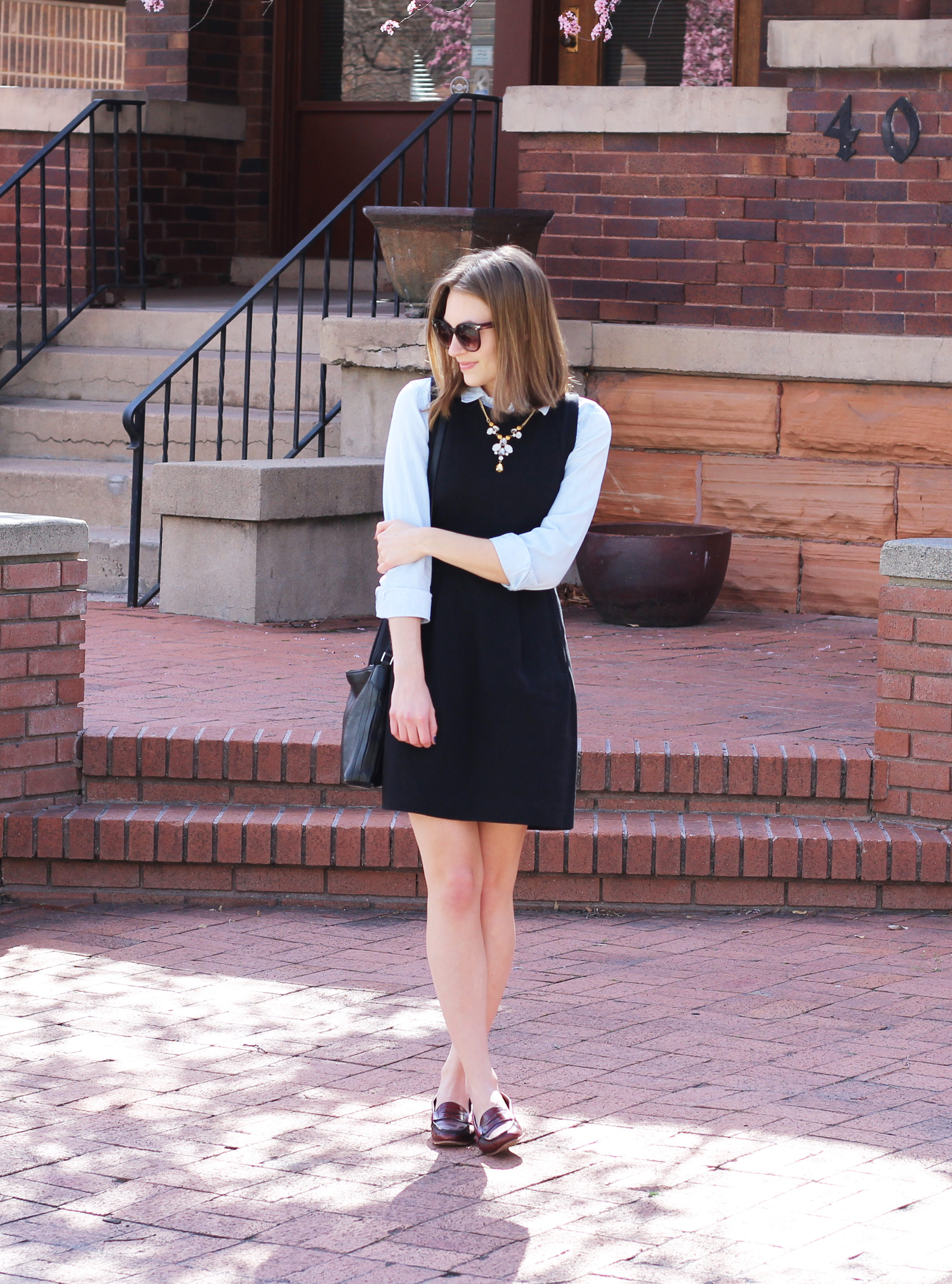 Black dress layered over chambray shirt + burgundy loafers + black bag — Cotton Cashmere Cat Hair