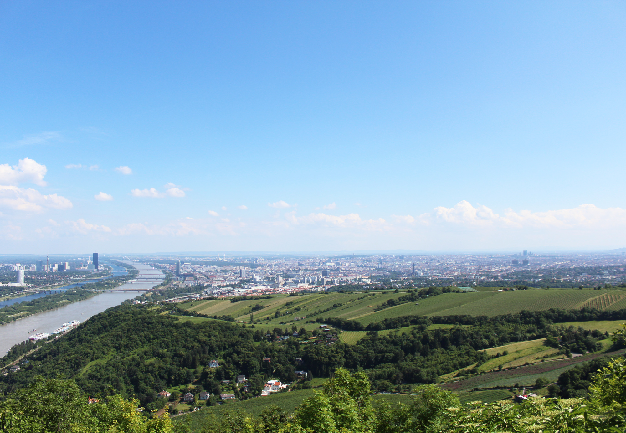 View of Vienna from Leopoldsberg — via Cotton Cashmere Cat Hair