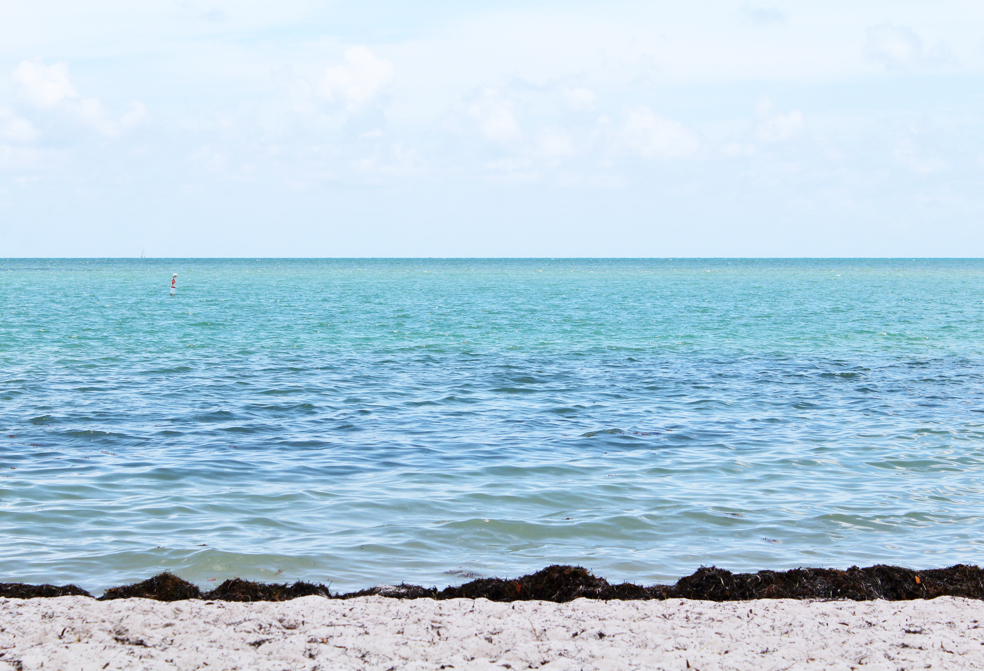 Sombrero Beach, Marathon, Florida — Cotton Cashmere Cat Hair