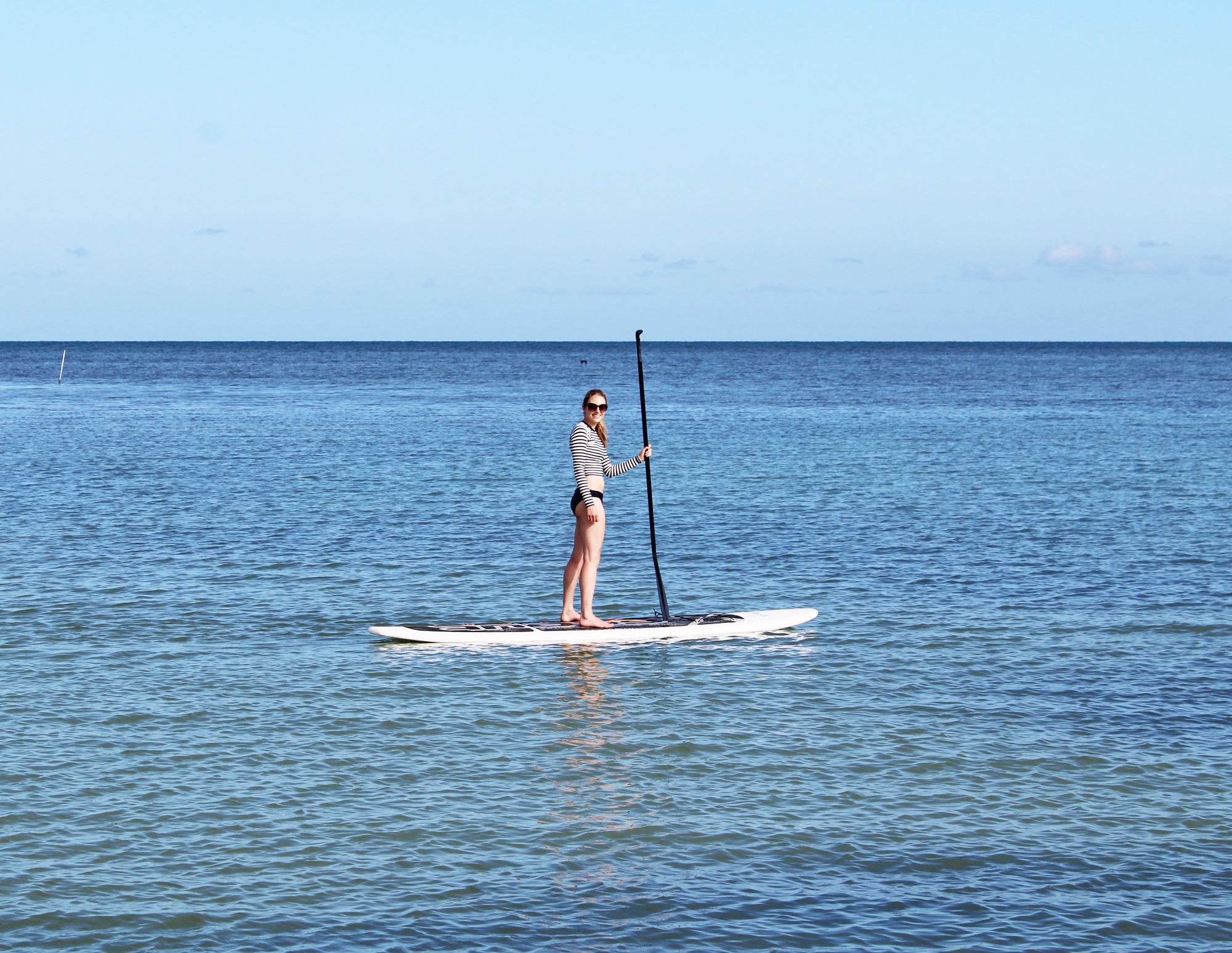 Stand up paddle in the Atlantic Ocean, Florida Keys — Cotton Cashmere Cat Hair
