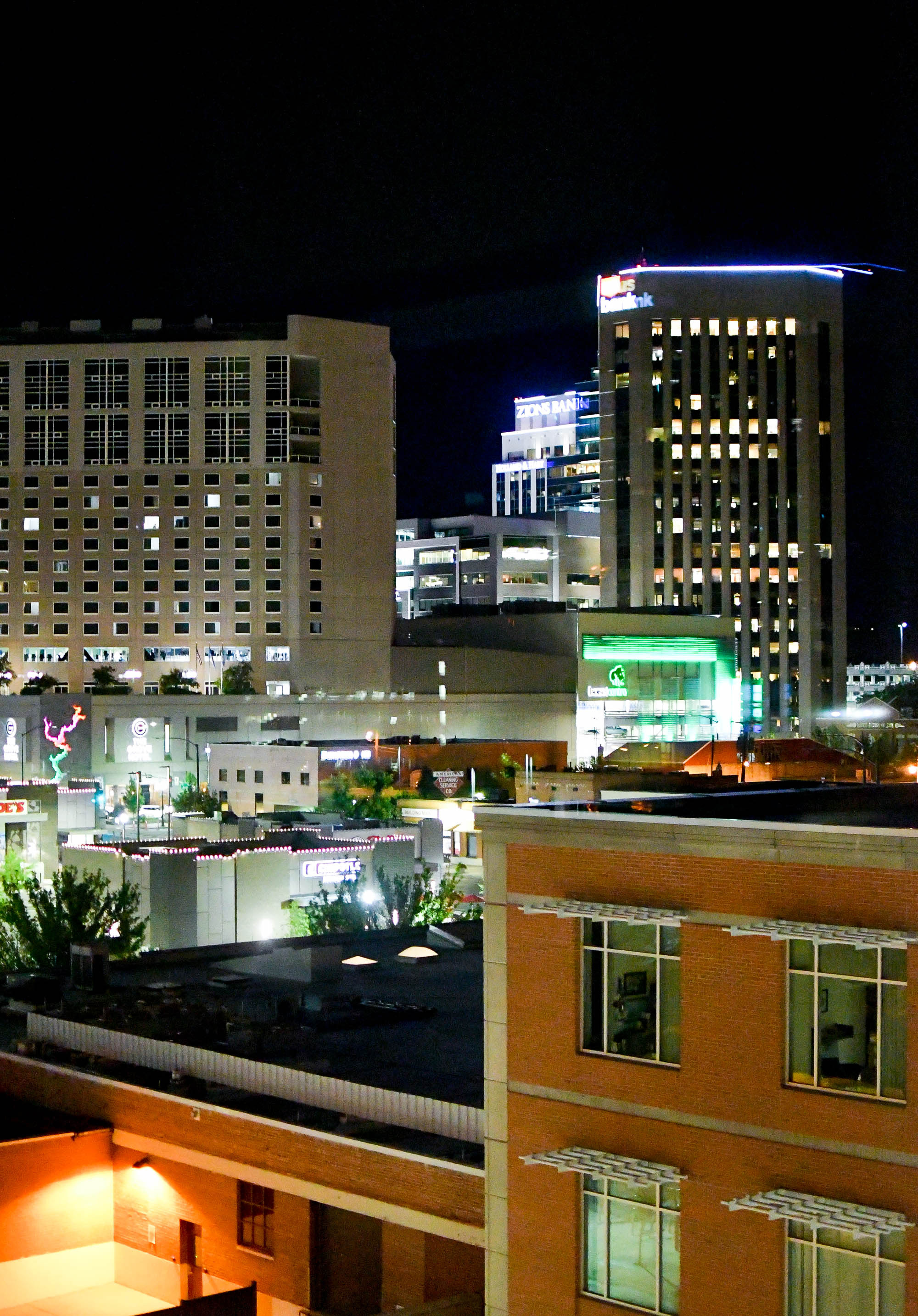 Downtown Boise, Idaho, at night — Cotton Cashmere Cat Hair