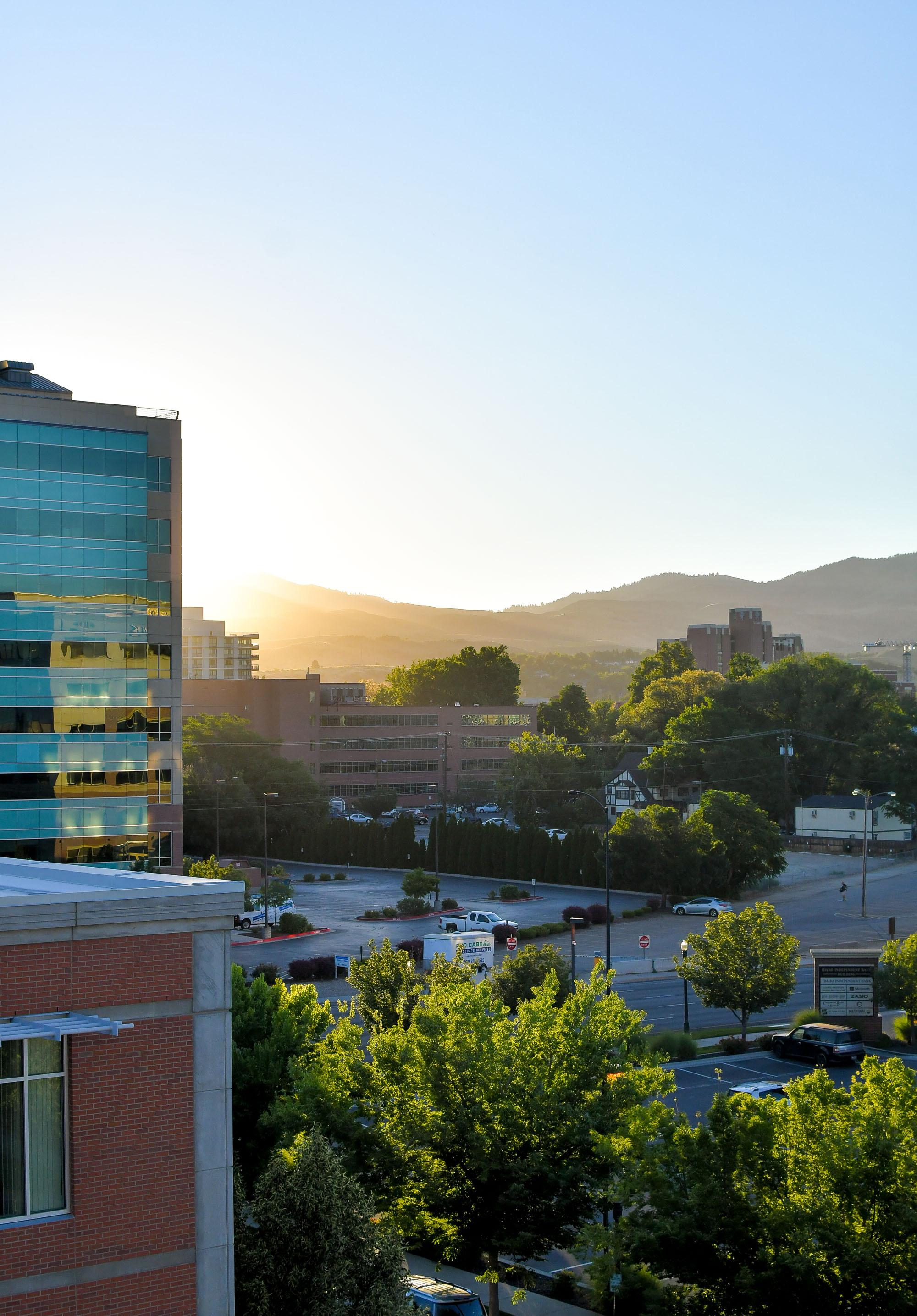 Downtown Boise, Idaho, sunrise — Cotton Cashmere Cat Hair
