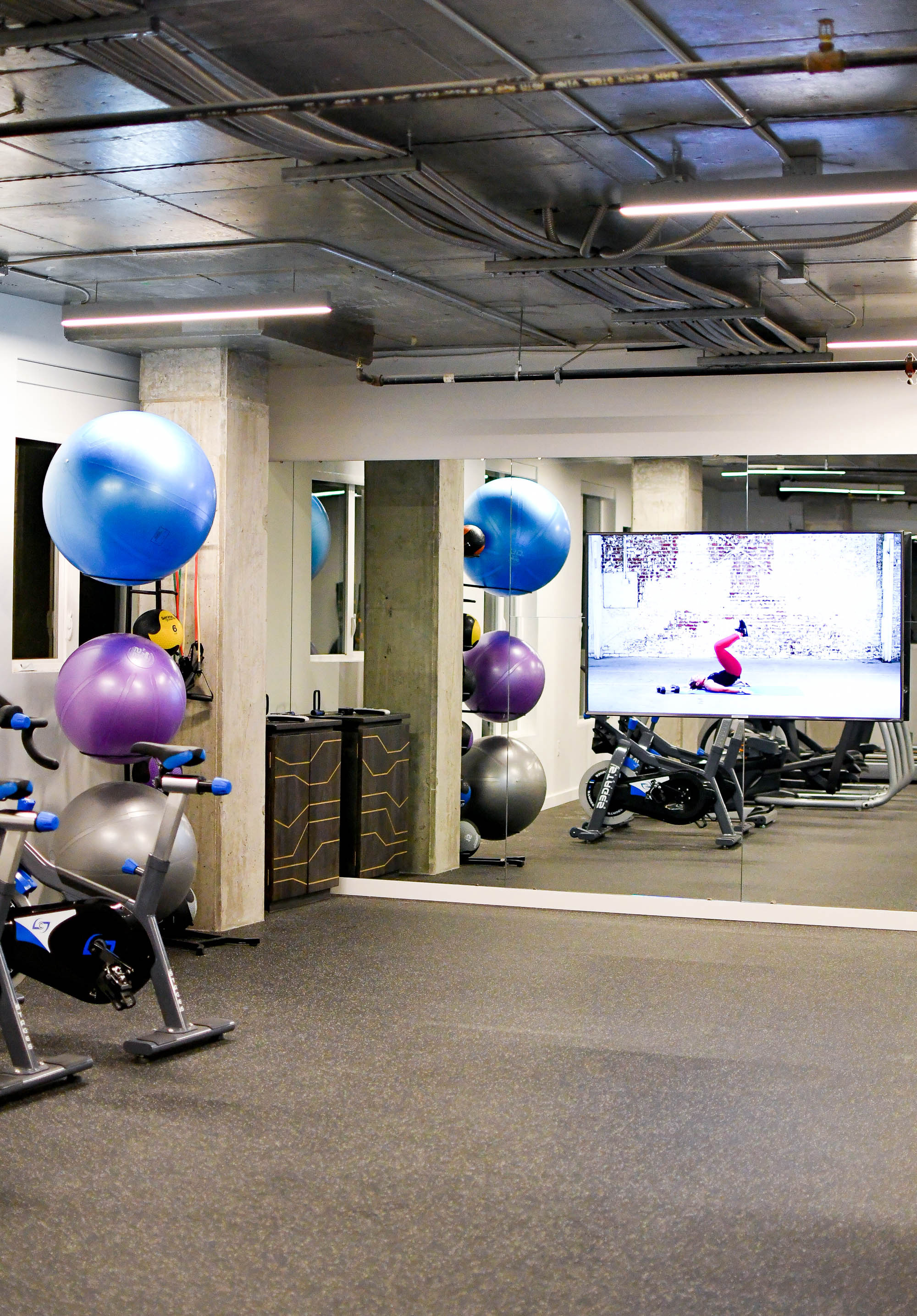 Fitness center at The Fowler, Boise, Idaho — Cotton Cashmere Cat Hair