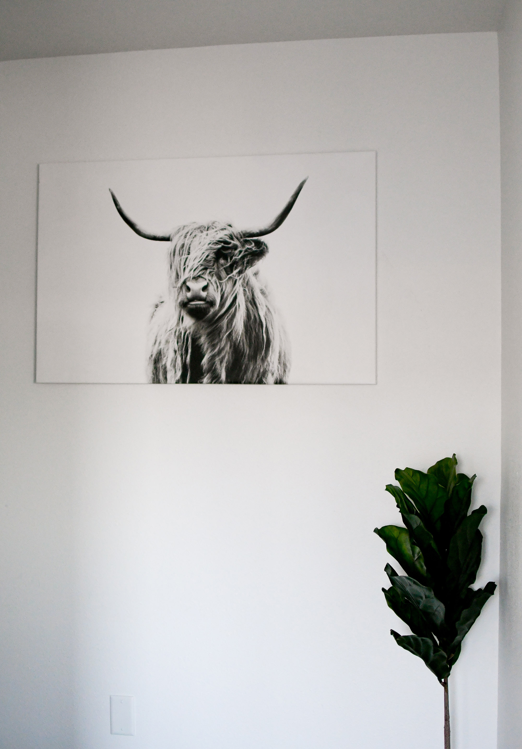 Minimal home decor at Stay Alfred — Cotton Cashmere Cat Hair
