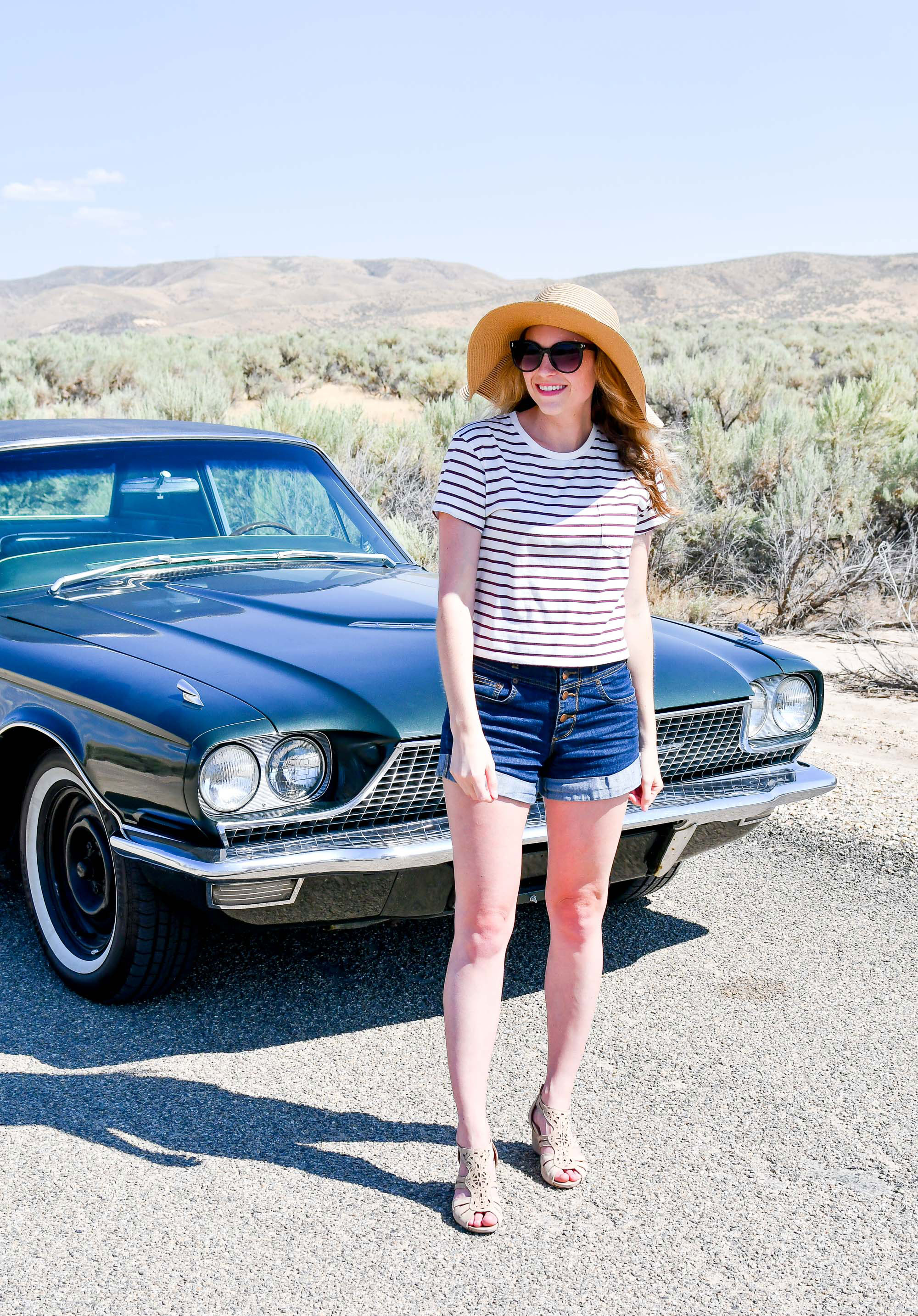 Striped tee and denim shorts summer outfit — Cotton Cashmere Cat Hair
