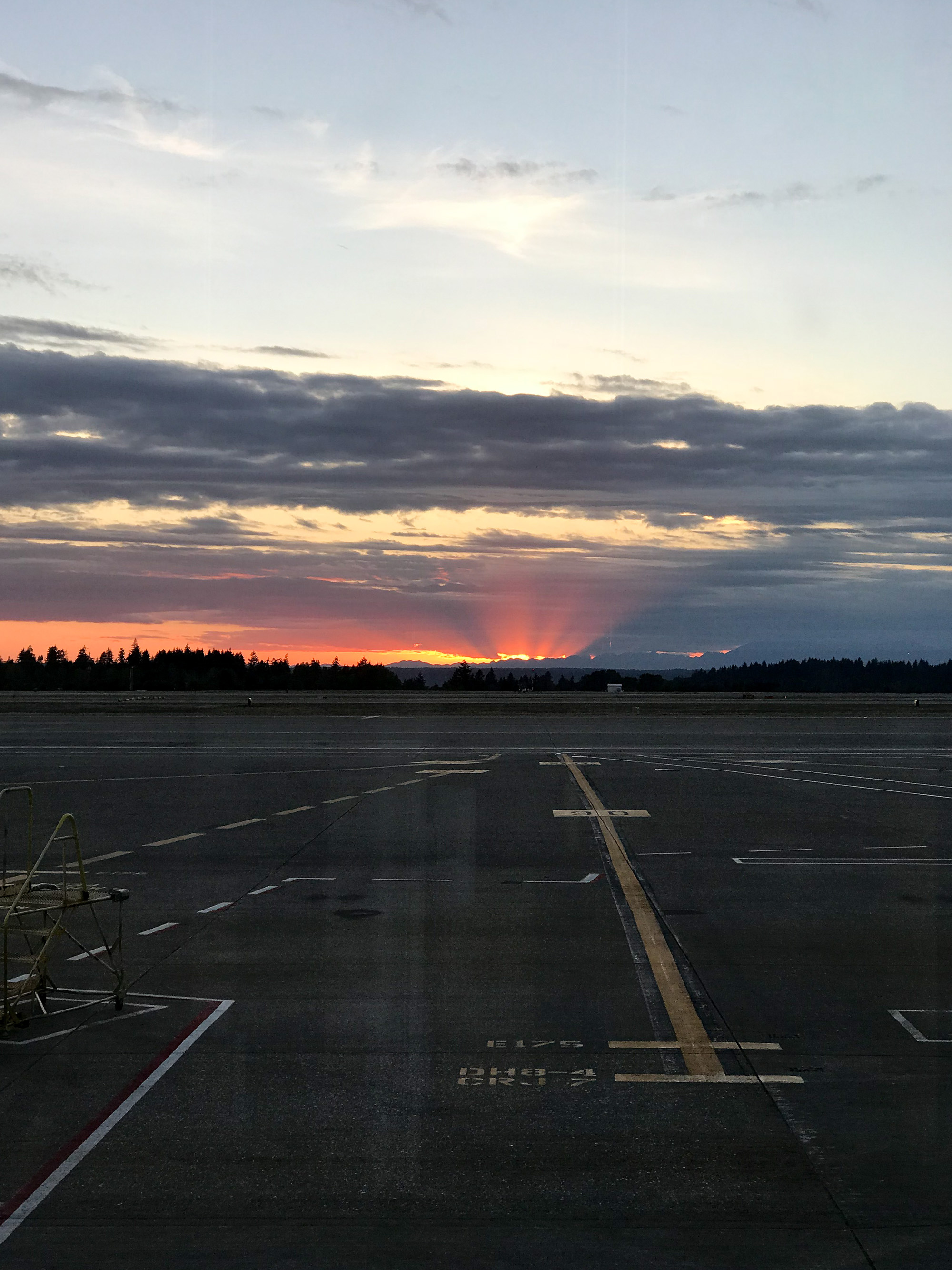 Sunset at SeaTac Airport — Cotton Cashmere Cat Hair
