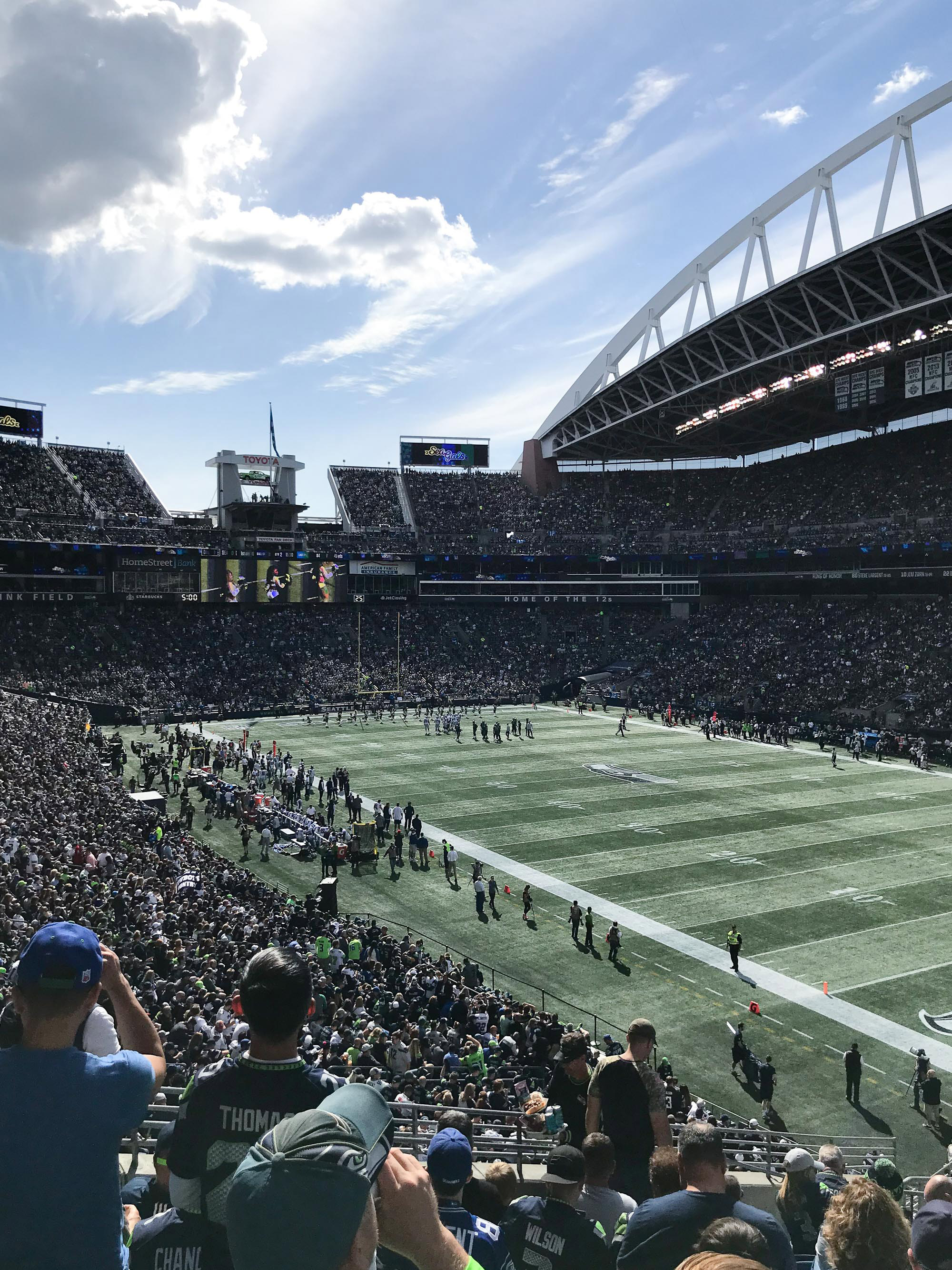 Seattle Seahawks vs Dallas Cowboys, Seattle, WA — Cotton Cashmere Cat Hair