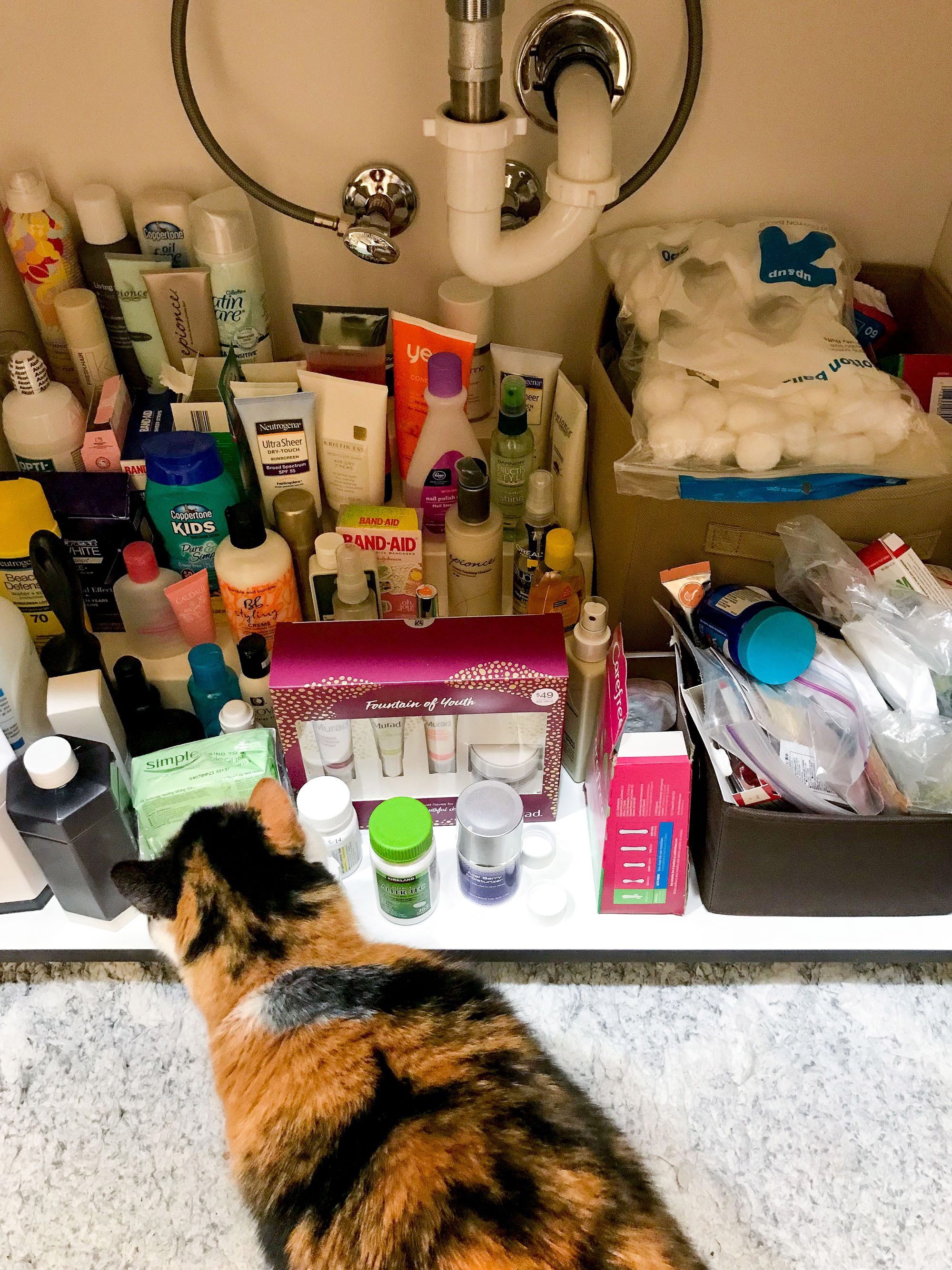 The January Cure: cabinet bathroom storage/mess — Cotton Cashmere Cat Hair