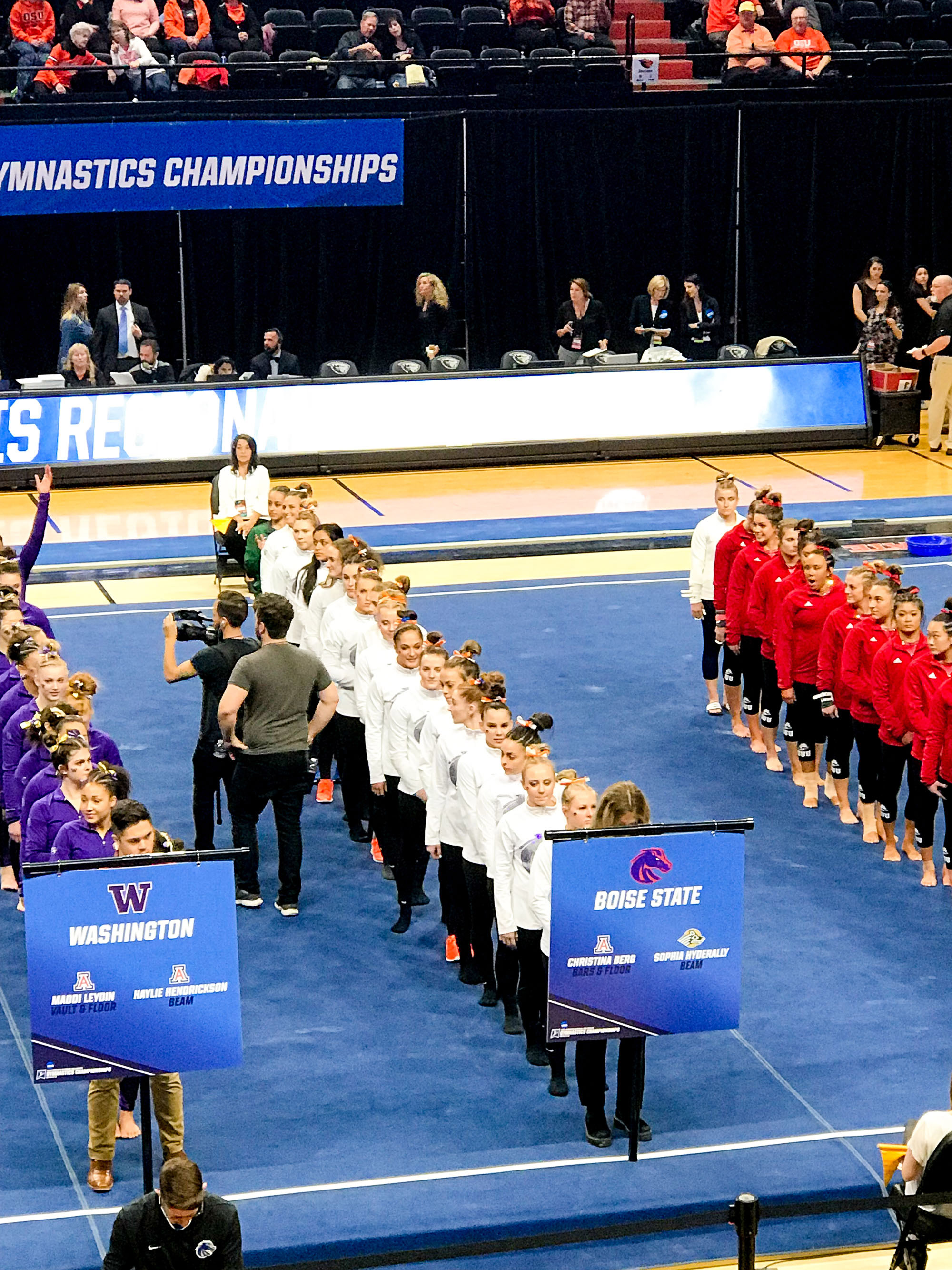 Boise State gymnastics team — Cotton Cashmere Cat Hair