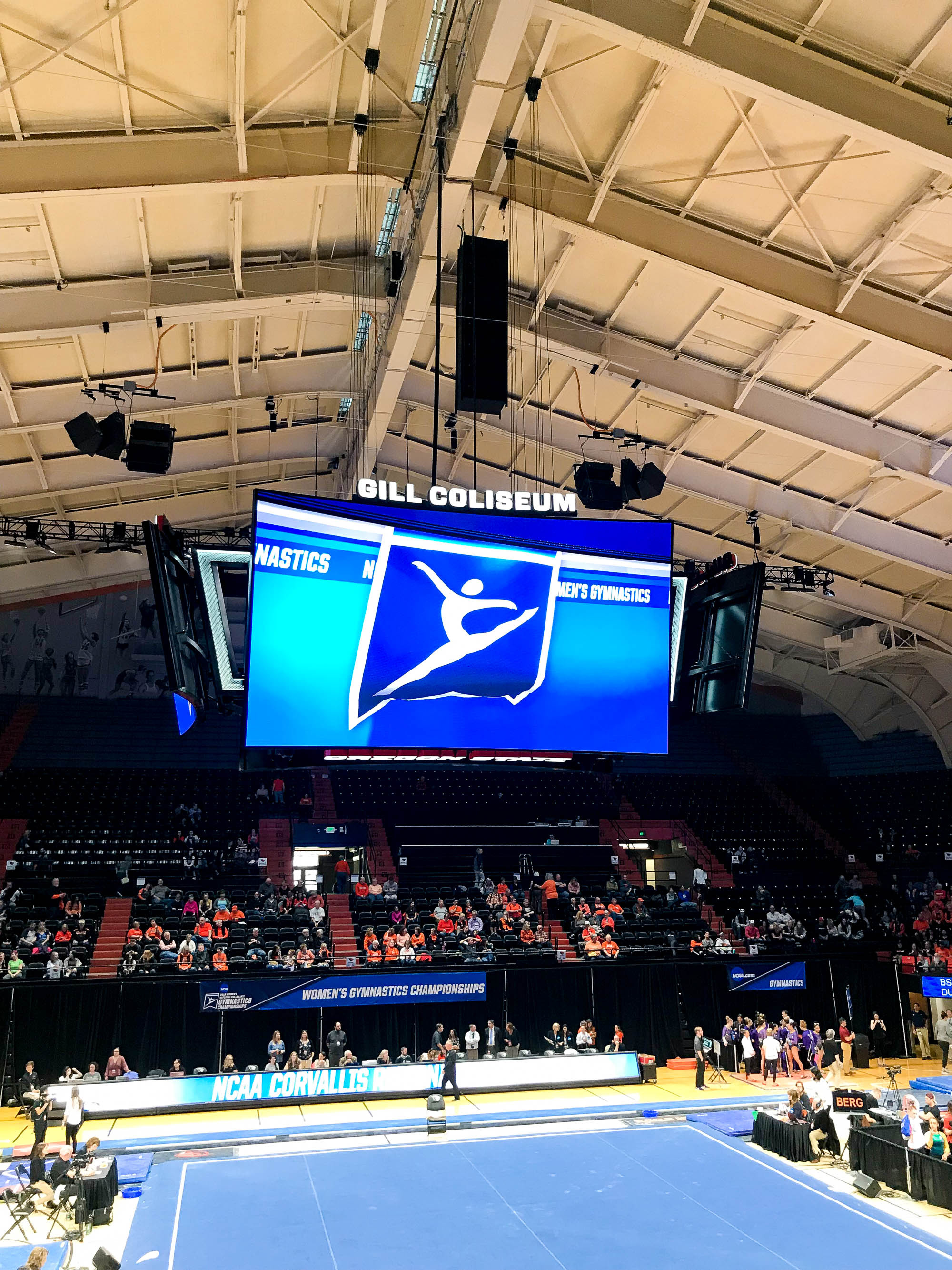 Gymnastics regional at Gill Coliseum, Oregon State University — Cotton Cashmere Cat Hair