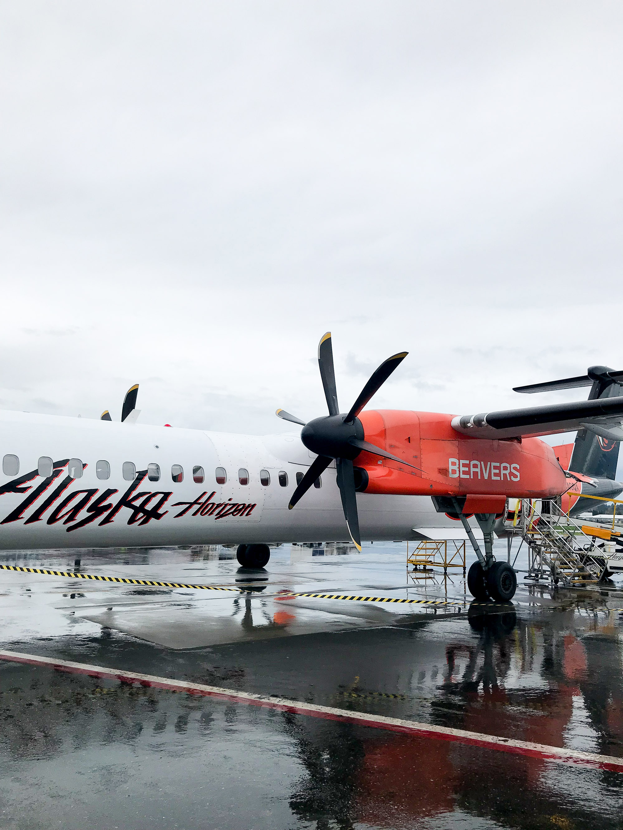 Horizon Air Oregon State plane — Cotton Cashmere Cat Hair