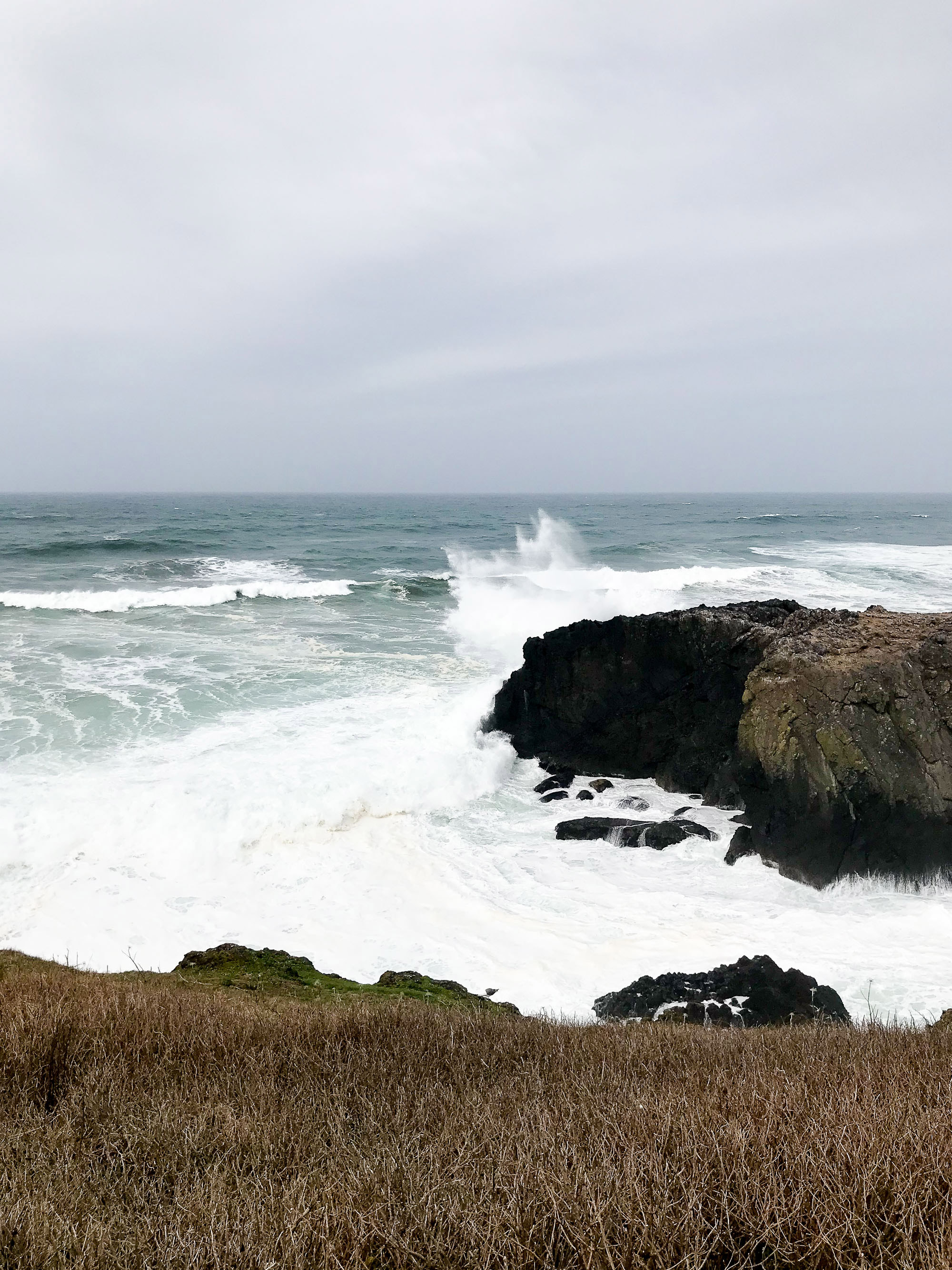 Yaquina Head Outstanding Natural Area — Cotton Cashmere Cat Hair