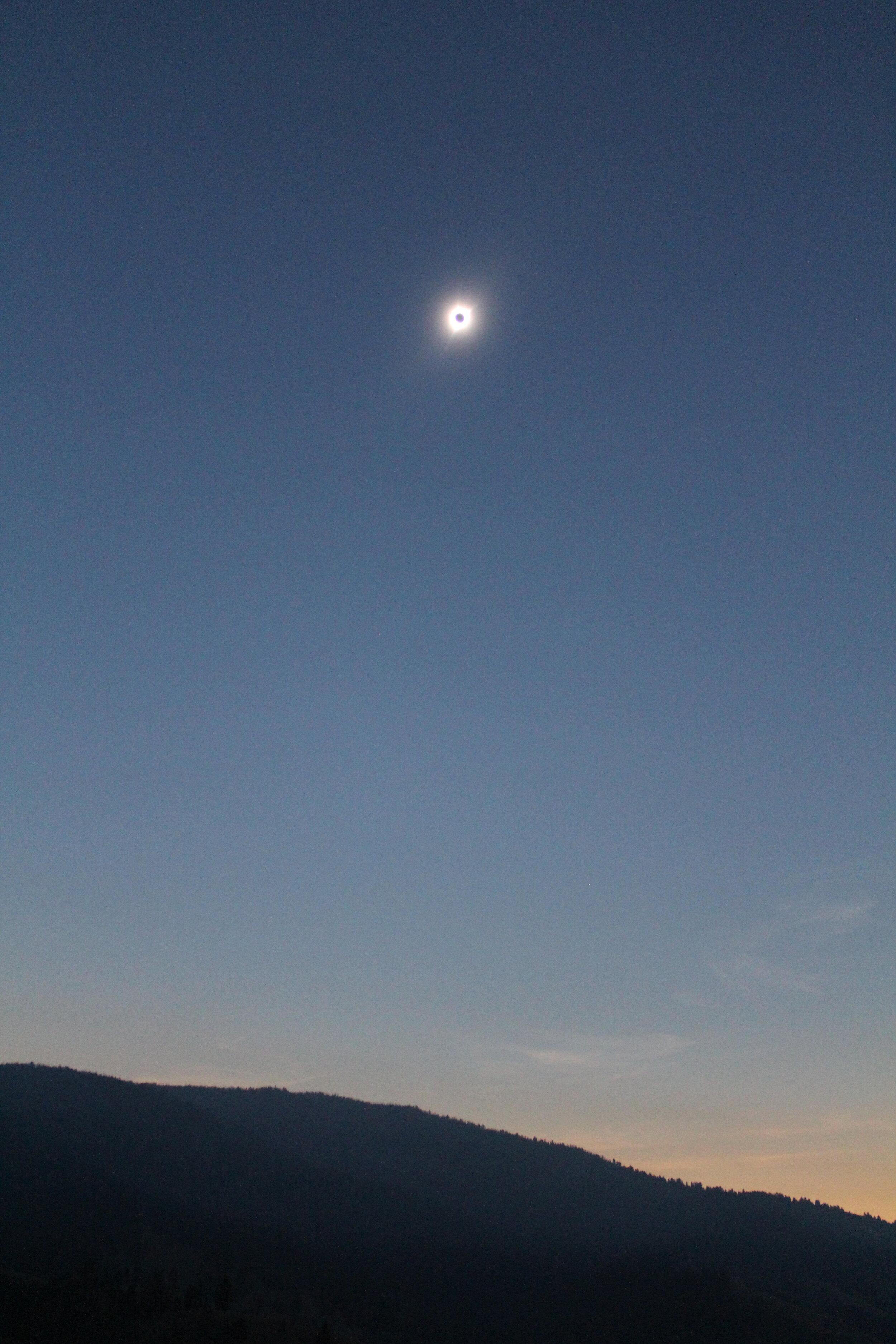 Anti-bucket list: total solar eclipse — Cotton Cashmere Cat Hair