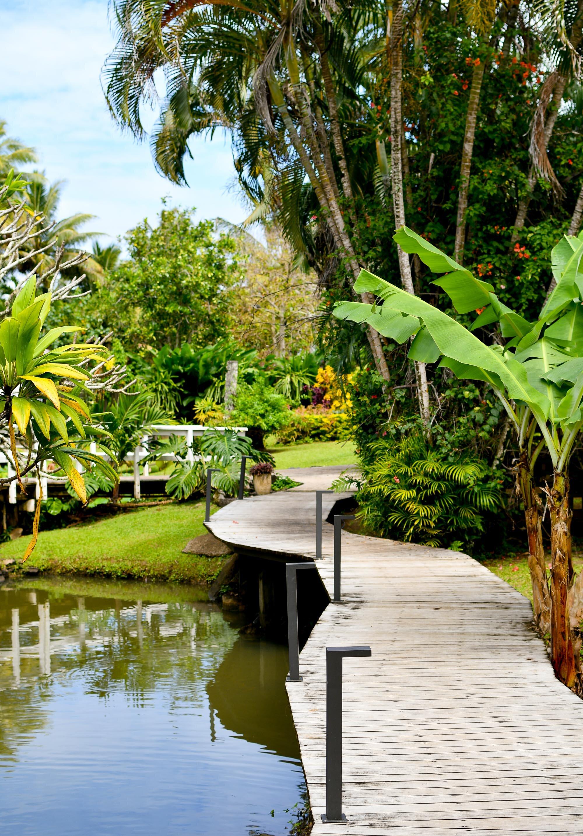 Gardens at Muri Beachcomber, Rarotonga, Cook Islands — Cotton Cashmere Cat Hair