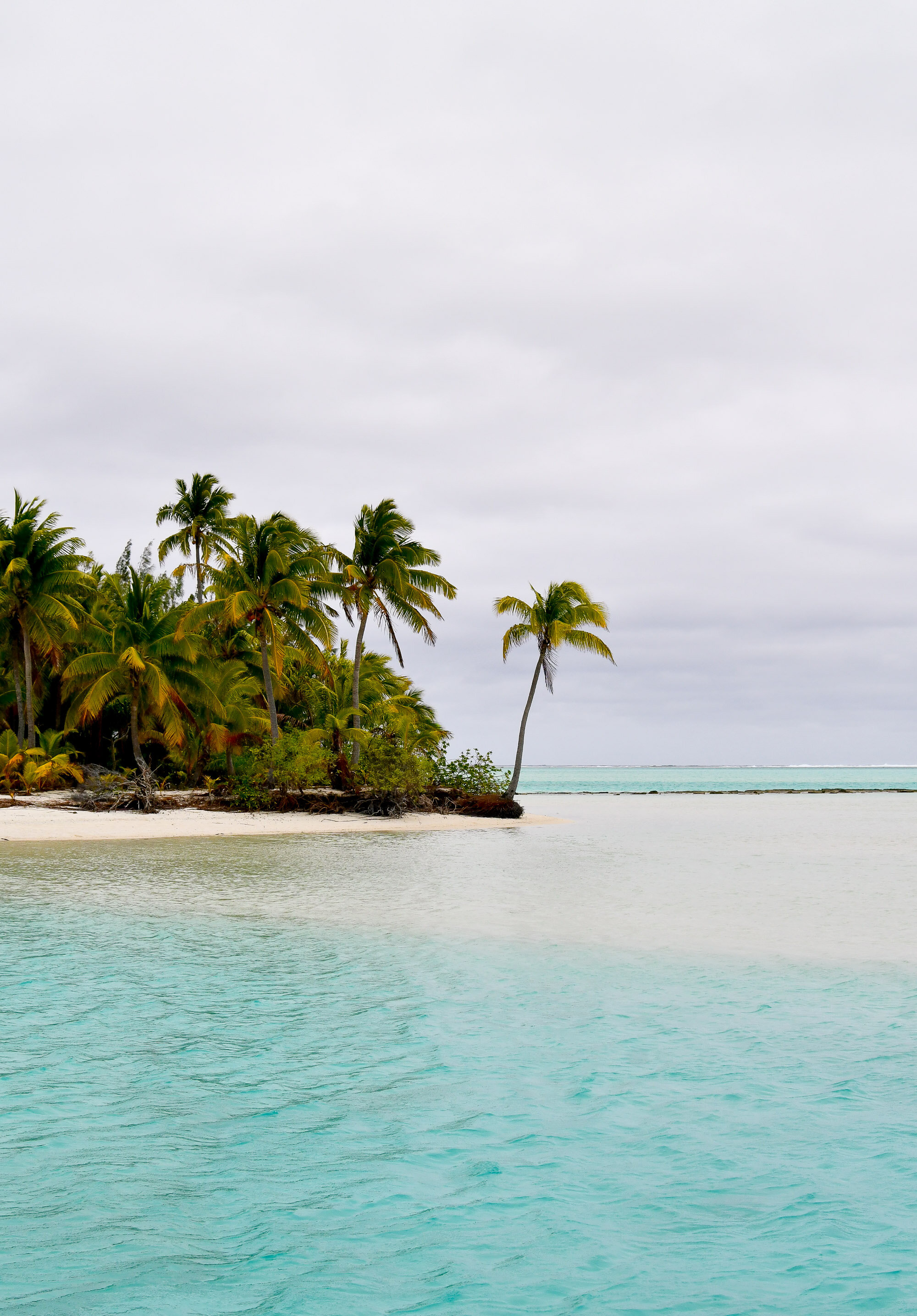 Sandbar at One Foot Island, Aitutaki, Cook Islands — Cotton Cashmere Cat Hair