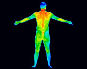 Scan_full-body.jpg