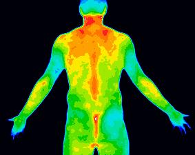 Scan_mens-wellness.jpg