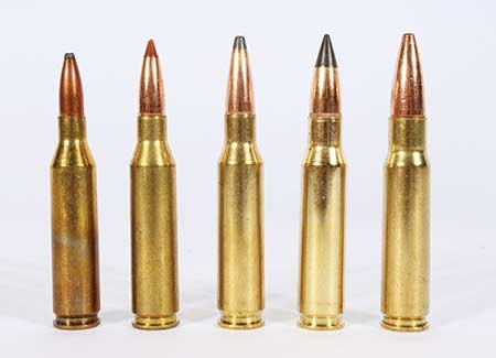 .243win, 260rem, 7mm-08, 308win, .338Fed. All of these are varients of the .308Win