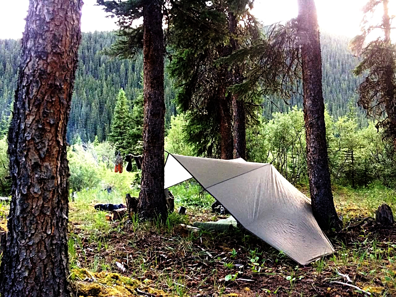A few mature trees offer anchor points to pitch a back country tarp shelter and drying line. Open air and starry skies are to be expected.