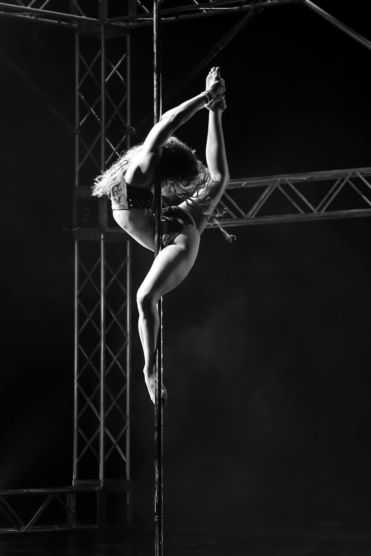 Lara Michaels | APC 2016 Trickster