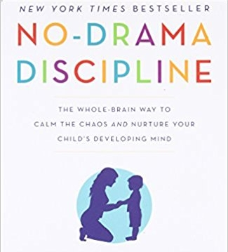 No-Drama Discipline by Siegel & Bryson