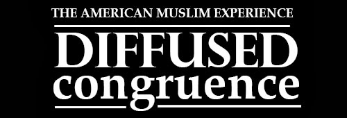 "Diffused Congruence: The American Muslim Experience .::. ""Comedian Azhar Usman Gets Serious"" .::. 24 January 2015"