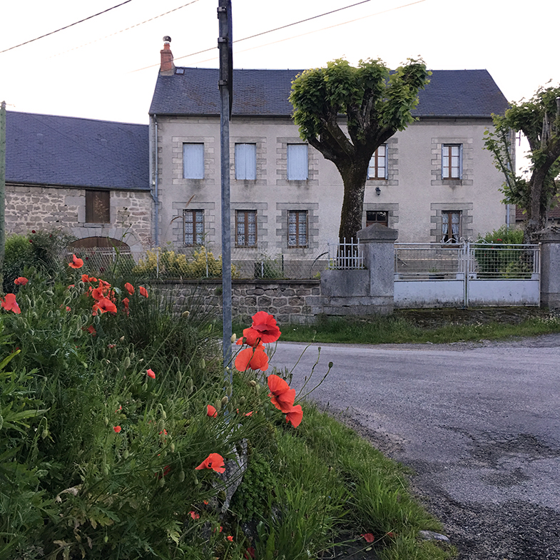 This is at the corner of my village; if I turn left I am following the Roman road. The woman who lives in the house you see here takes care of the little plot of land on the corner; the poppies are so beautiful here and seeing them always make me happy.