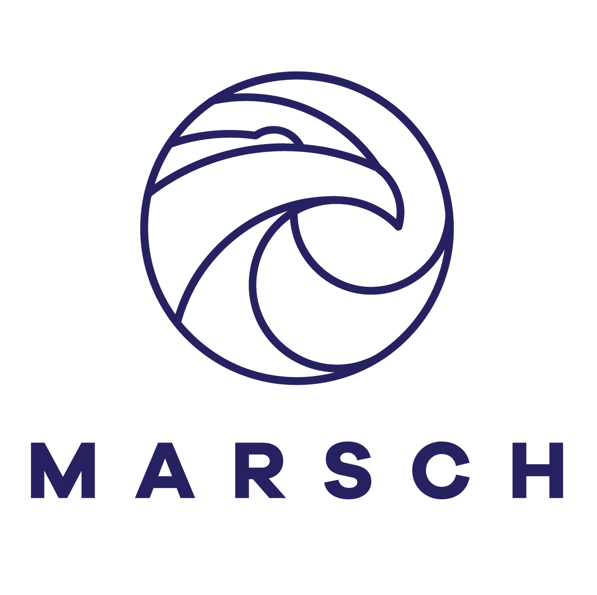 logomarsch vBlue preso 300.png