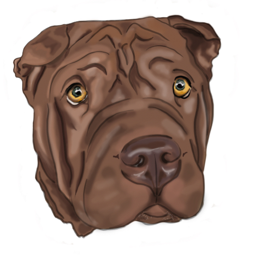 It's more #fun to draw wrinkly dogs #swipeleft #captain #flowered #sharpei 🐶 .⠀ .⠀ .⠀ .⠀ #iistudio #iicreativestudio #graphicdesign #design #illustration #illustrations #photoshop #illustrator #Vancouver #canada #YVR #thursday #digitalillustration #August #floweredsharpei #dog #dogsofinstagram stagram #graphicdesigndaily #weloveillustration #graphicdesigncentral #brisbanedigital #huriontablet @huiontablet