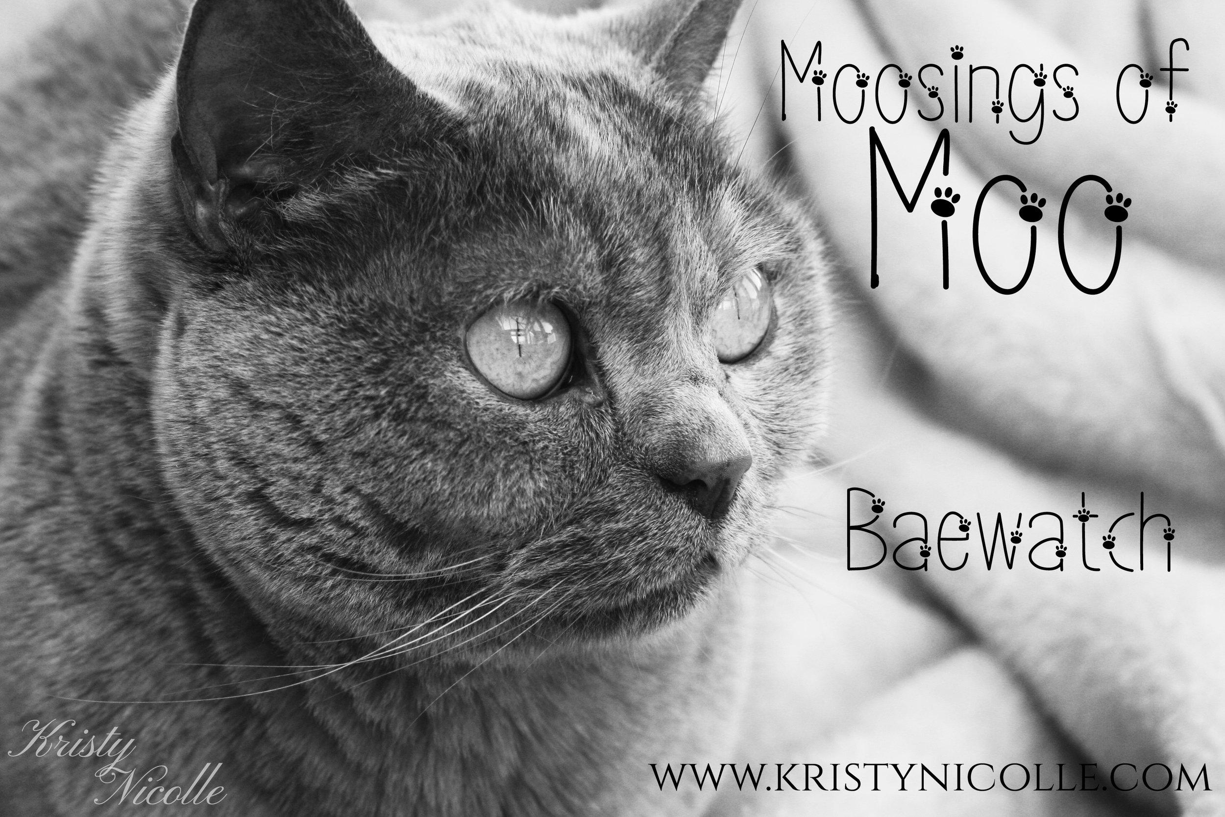 moosings of moo banner baewatch.jpg