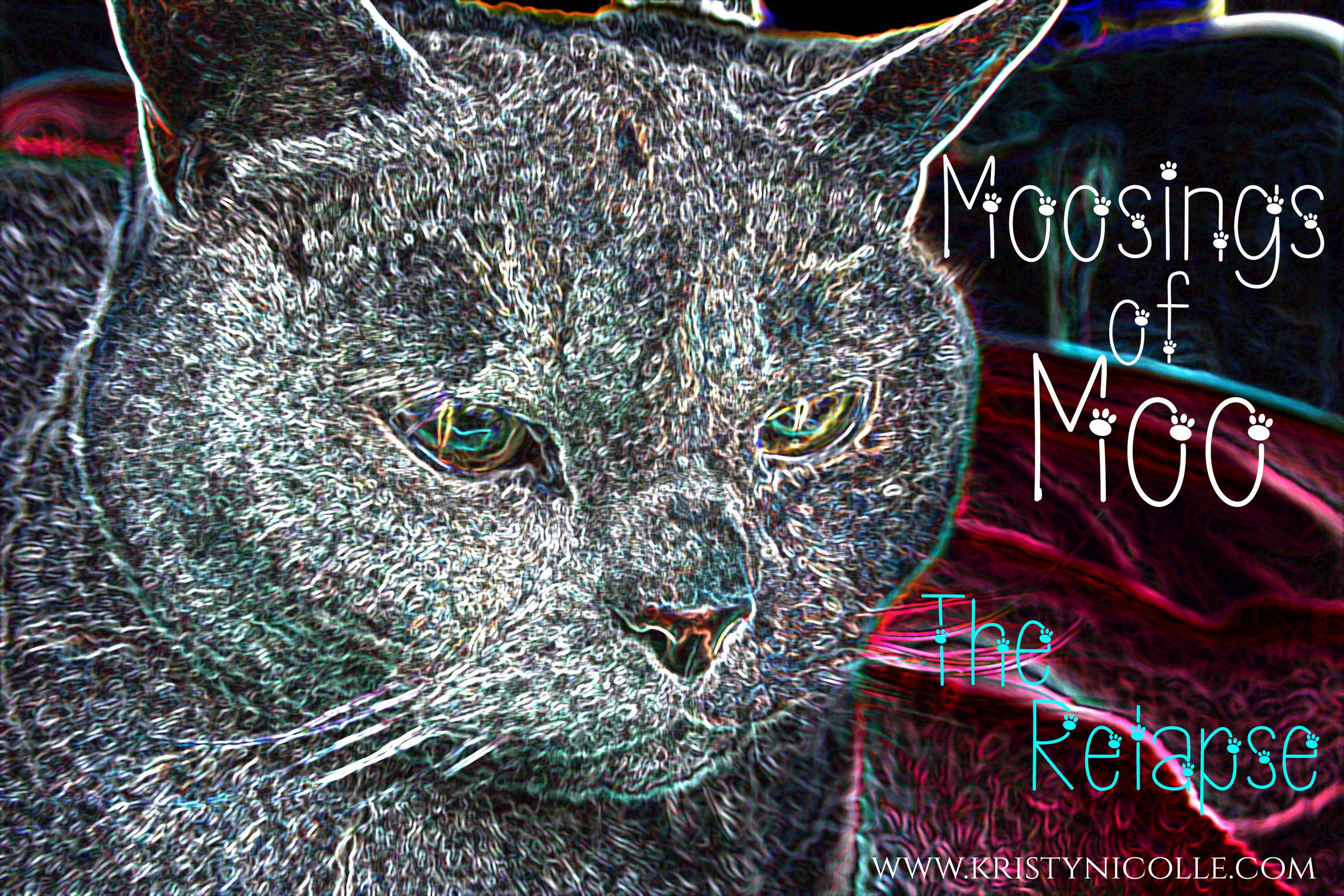Funny Cat Diary- Moosings of Moo
