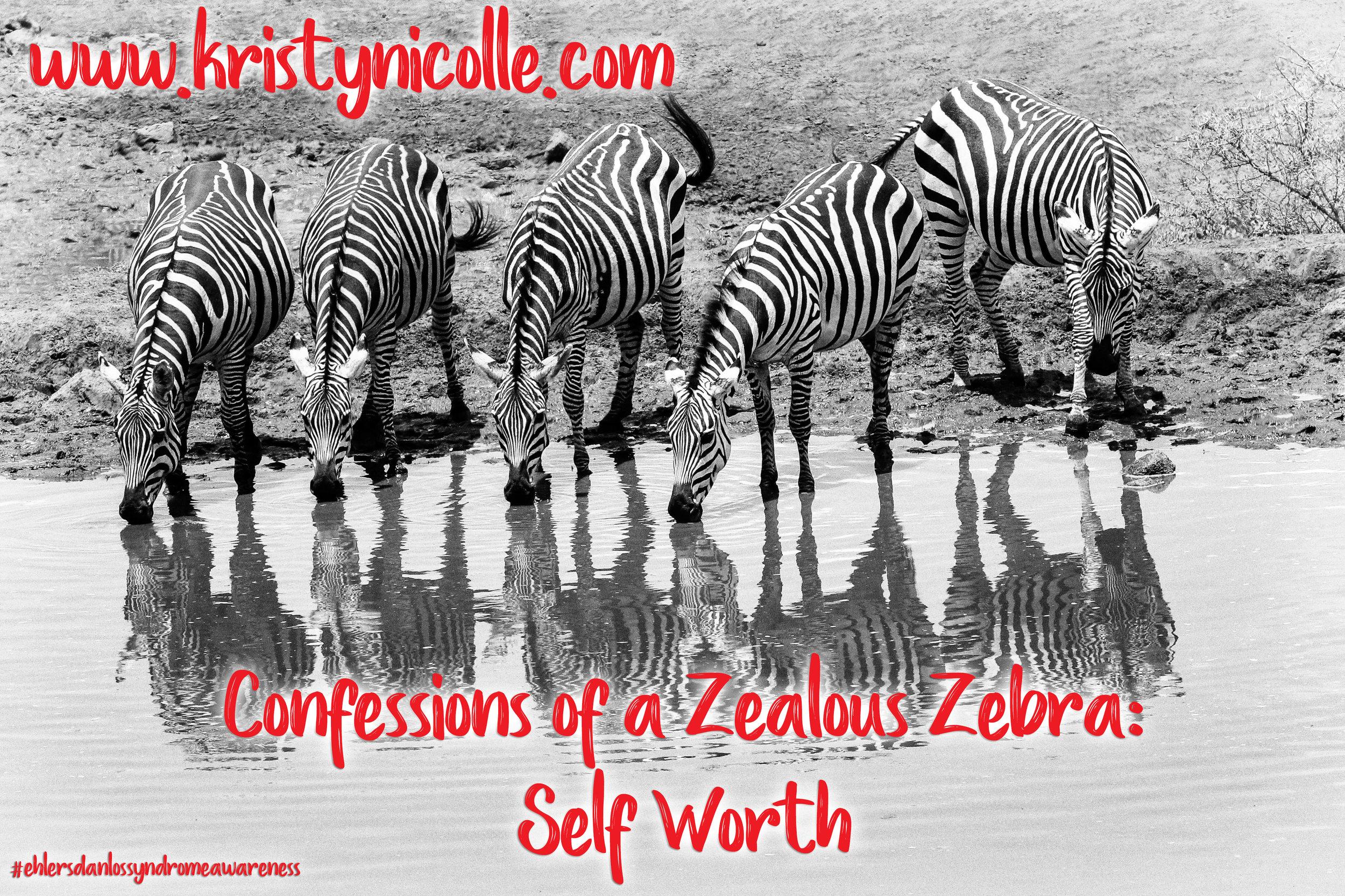 Confessions of a Zealous Zebra- Self Worth