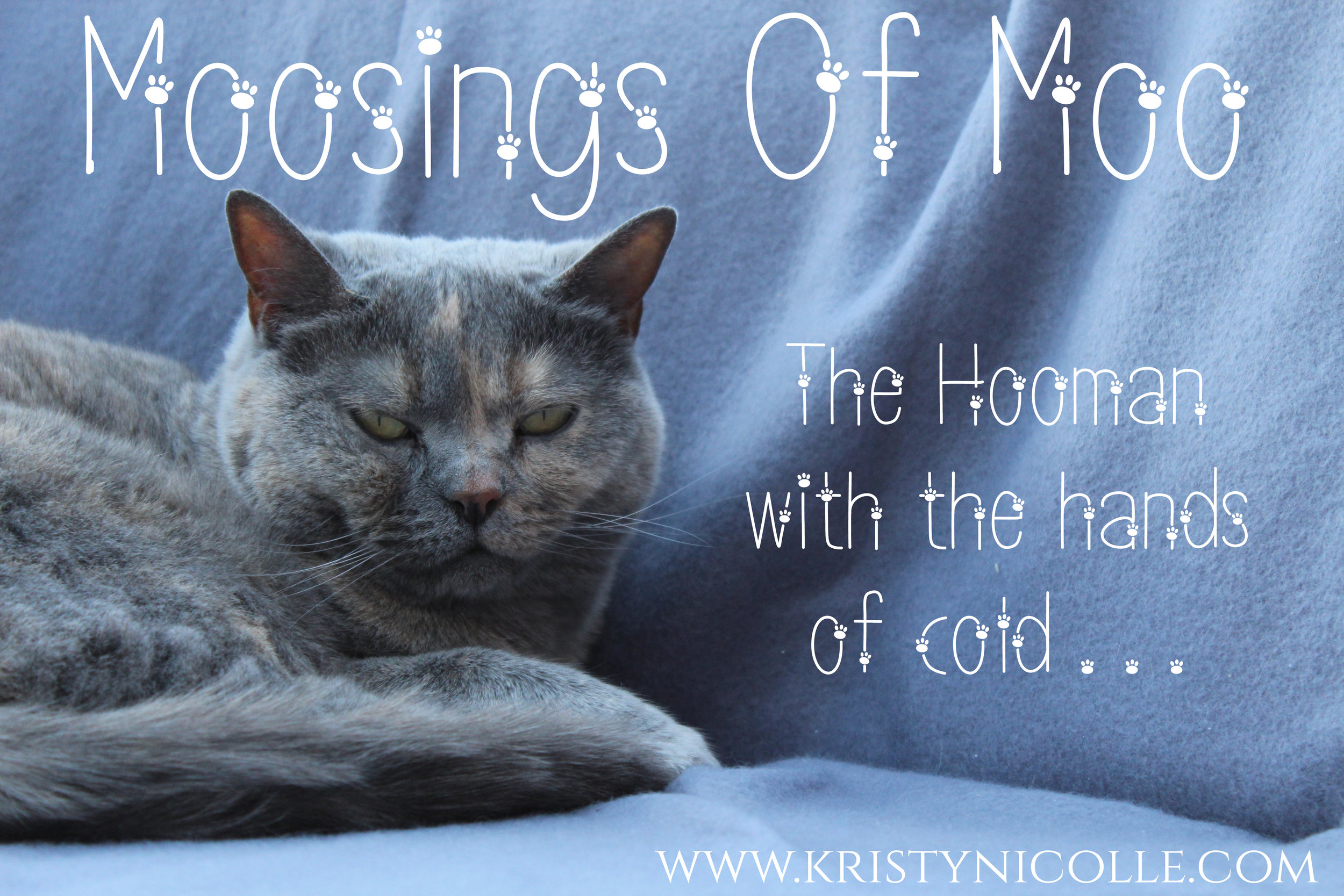 Moosings of Moo- The Hooman with the hands of cold