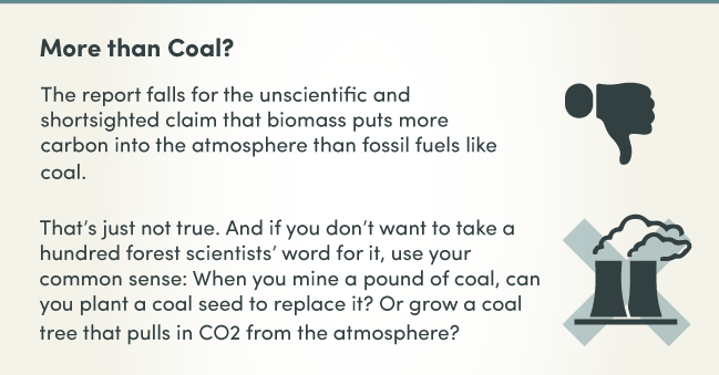 Biomass_Infographic_07.png