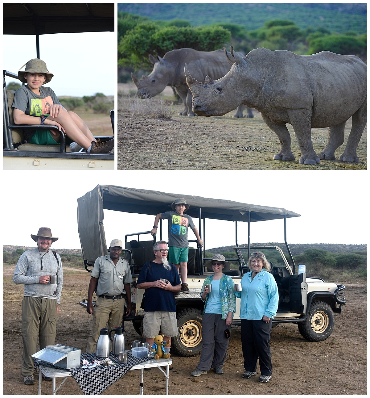 safari Namibia rhinos