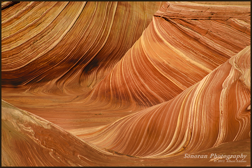 The Wave-060.jpg