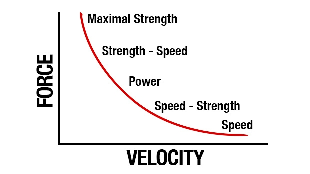 This is known as the force velocity curve and encompasses every quality of training. A properly periodized program will attack each of these qualities to allow an athlete advance becoming faster and stronger and In sports a faster and stronger kills.