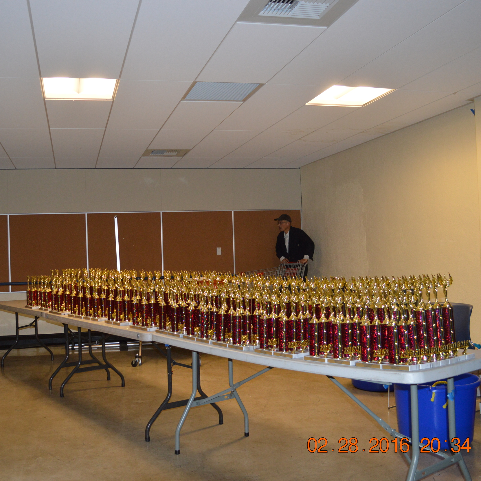 Trophies all lined up and ready for awards