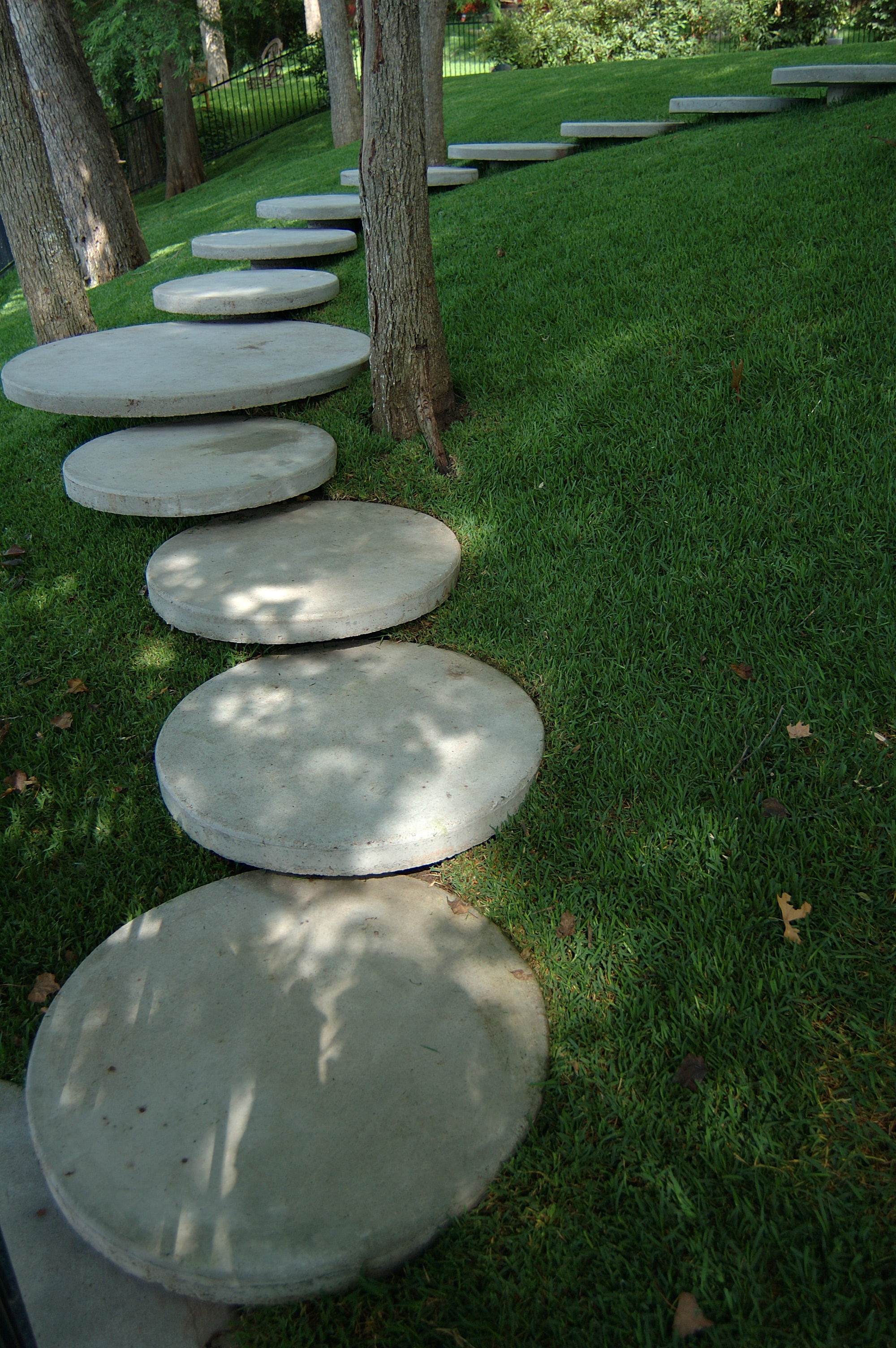project-thornton-lake-austin-circles-grass.jpg