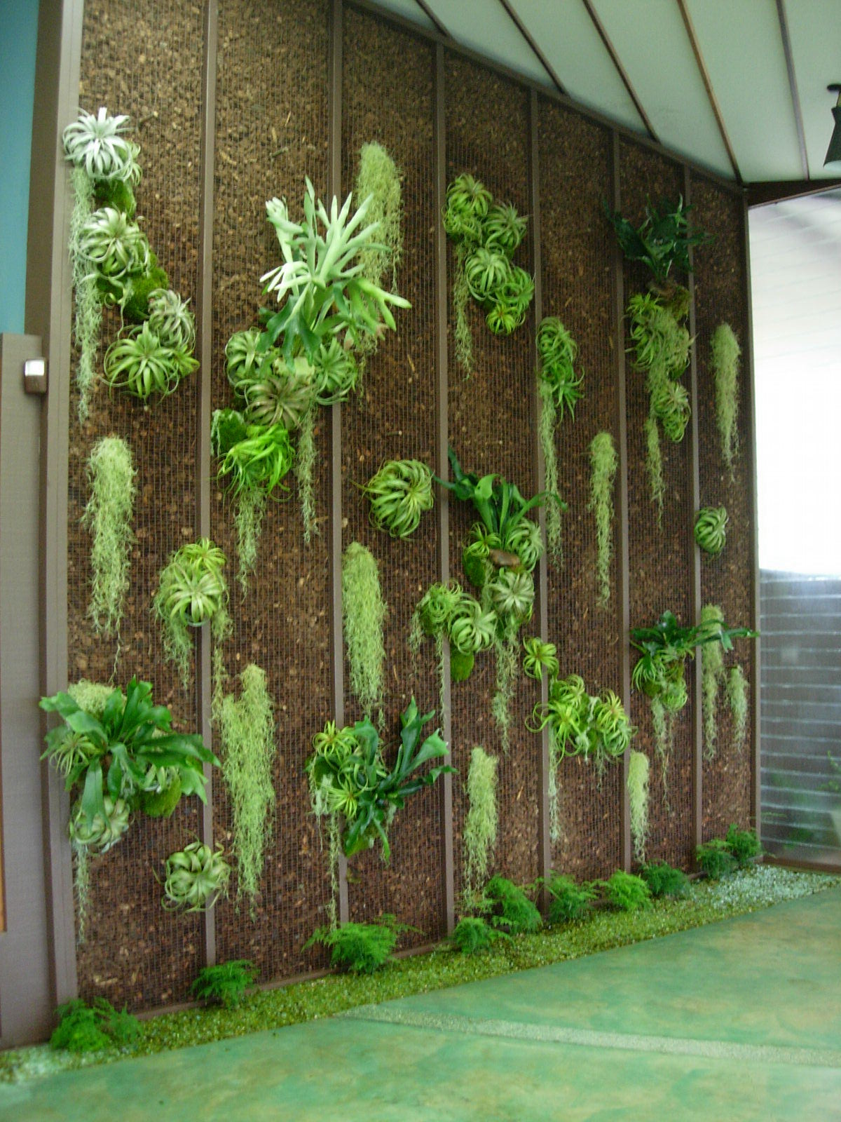 project-ojai-entry-living-wall3.jpg