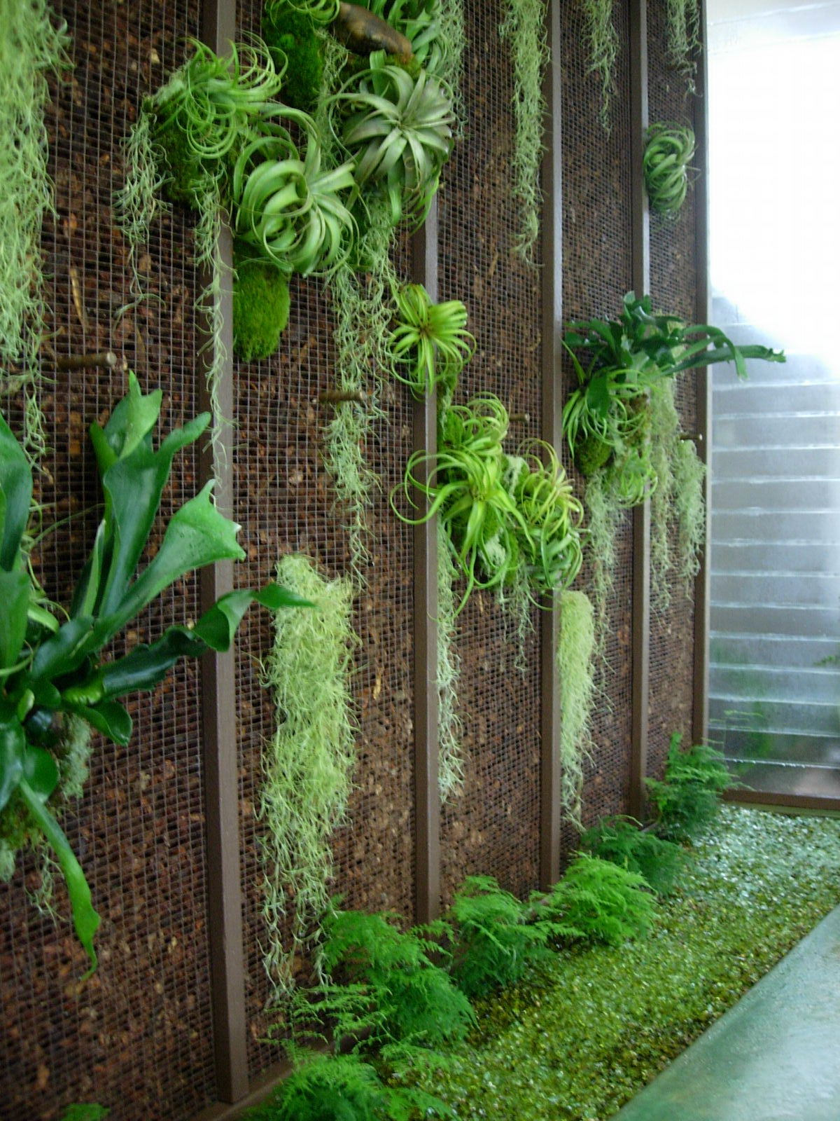 project-ojai-entry-living-wall2.jpg