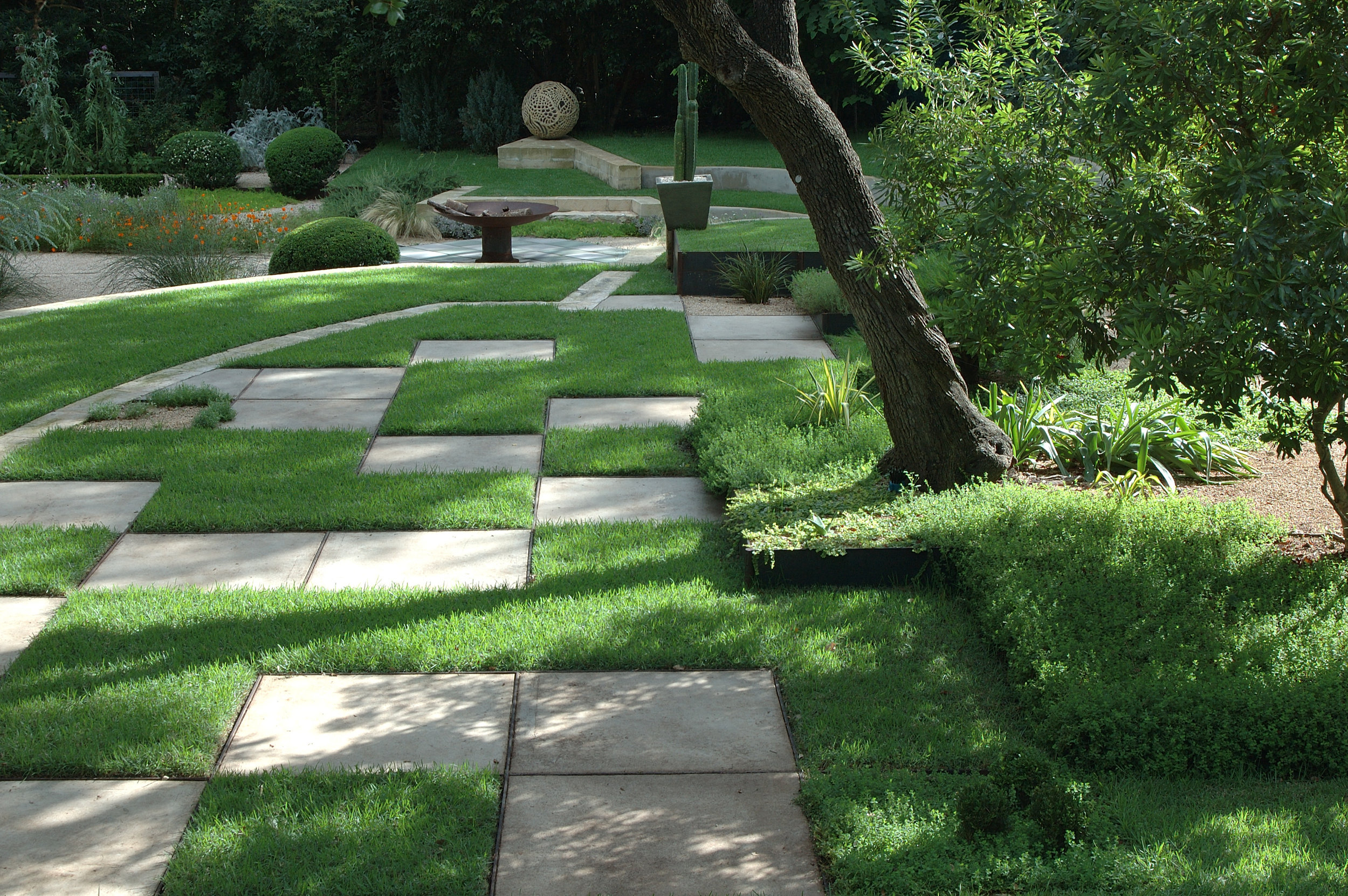 project-mayor-will-wynn-grass-checks.jpg
